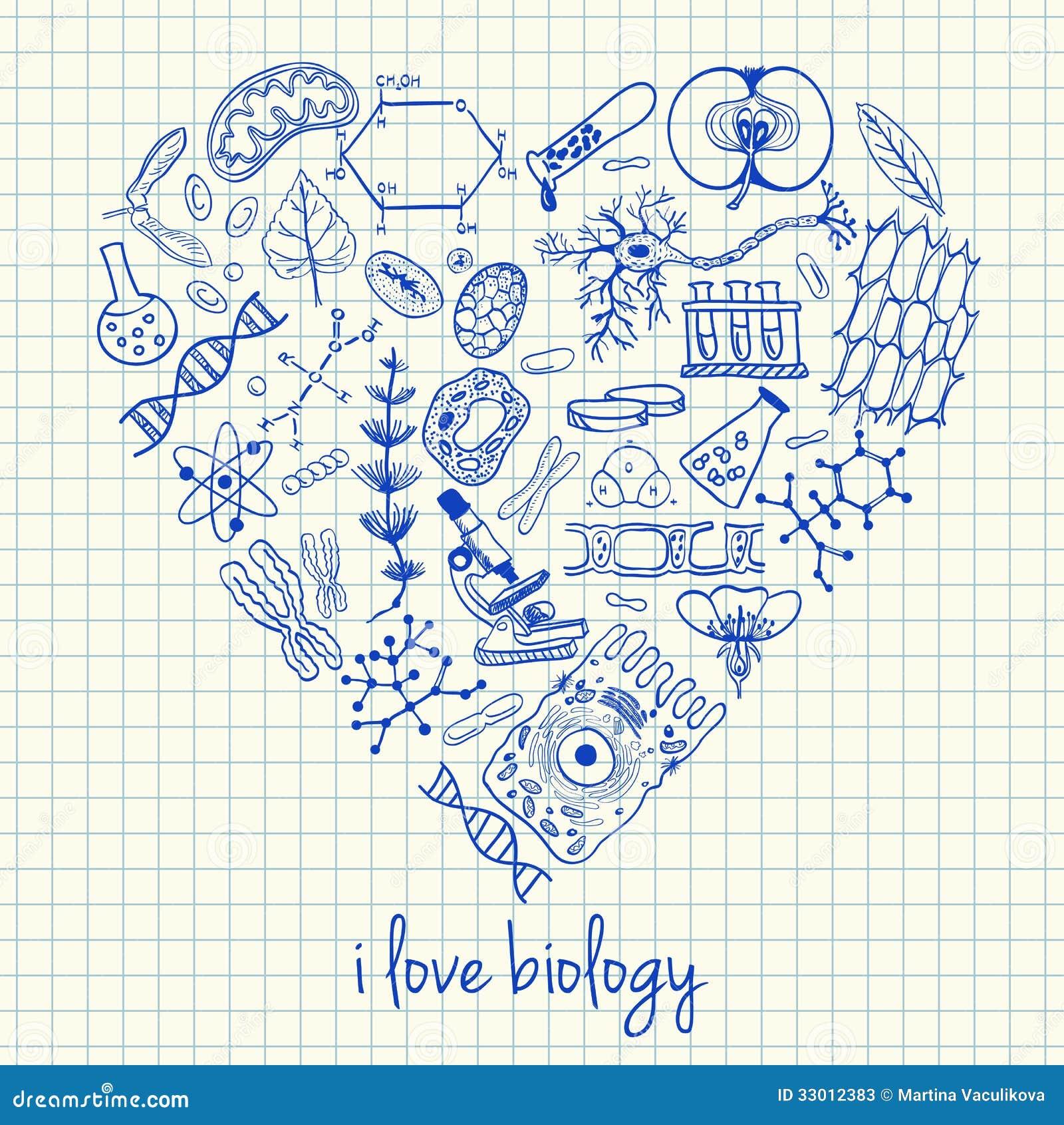 Desenhos da biologia na fôrma do coração