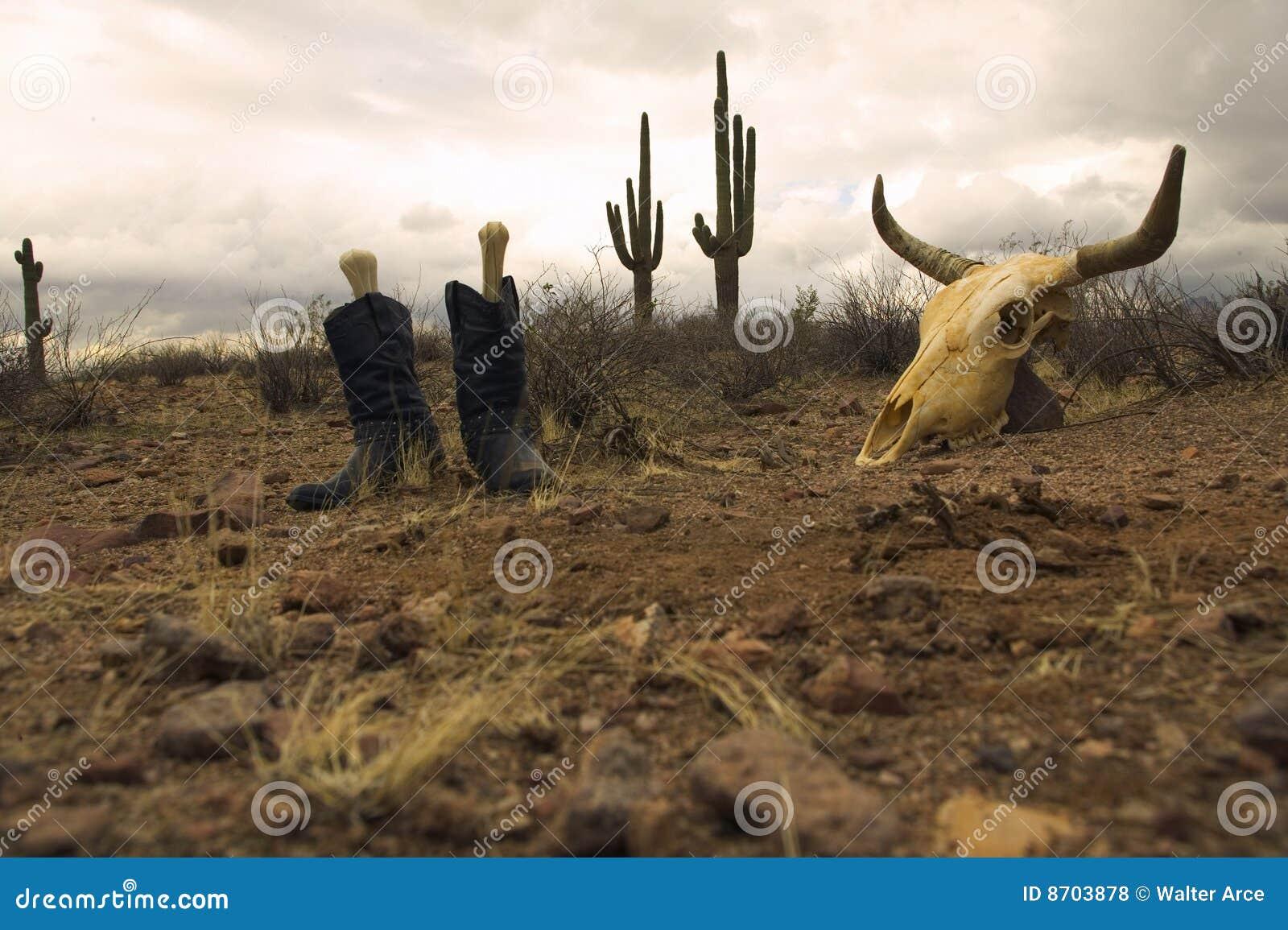 Desert Boots and Skull