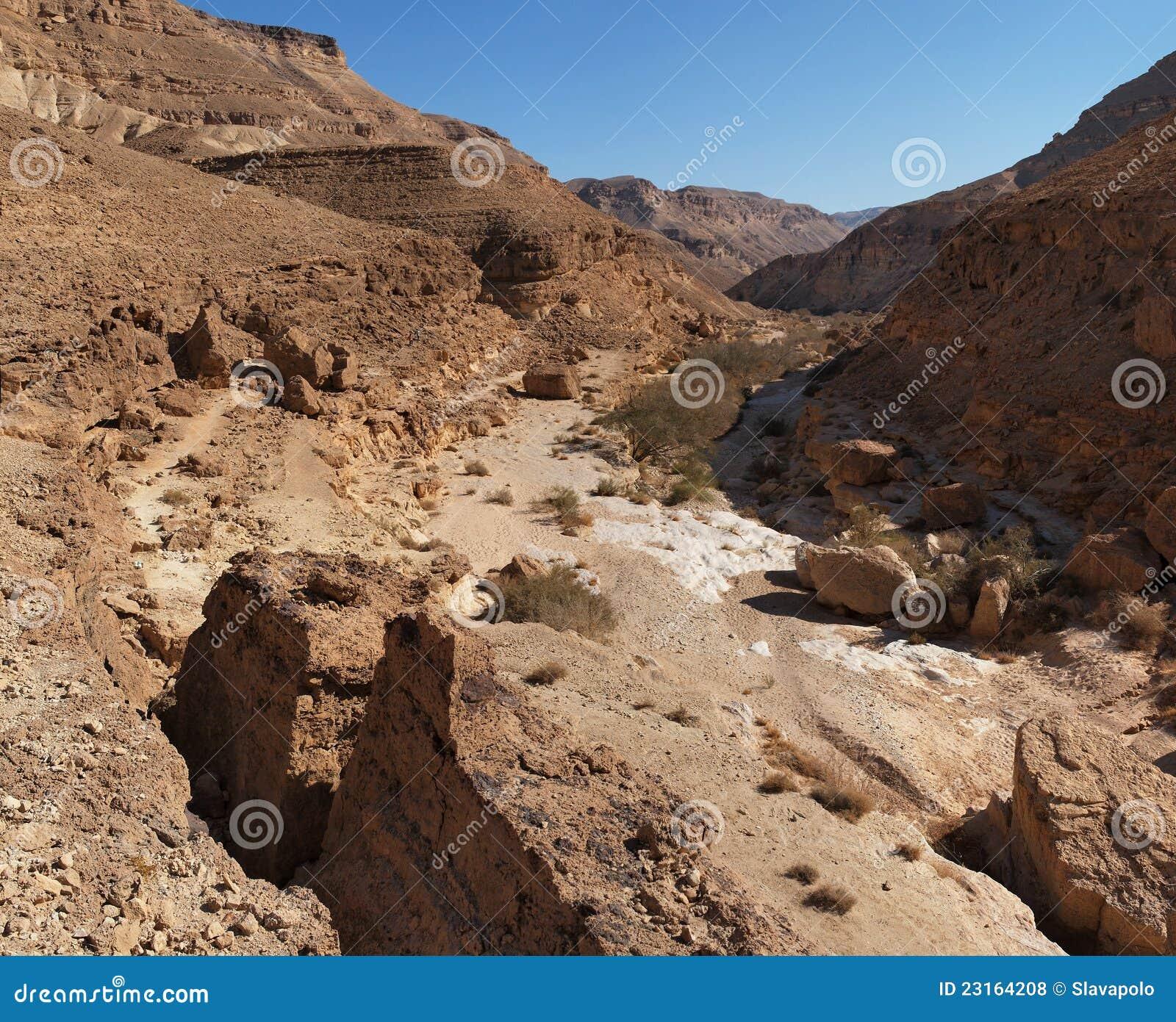 desert canyon royalty free stock photos   image 23164208