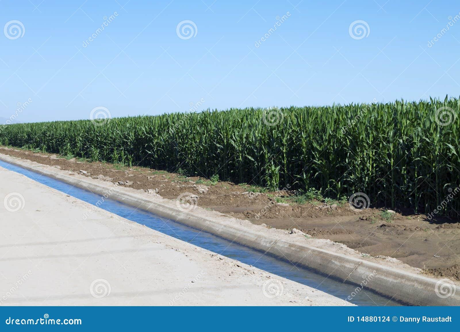 Agricultural Irrigation Canal : Desert farming agriculture irrigation canal stock photo