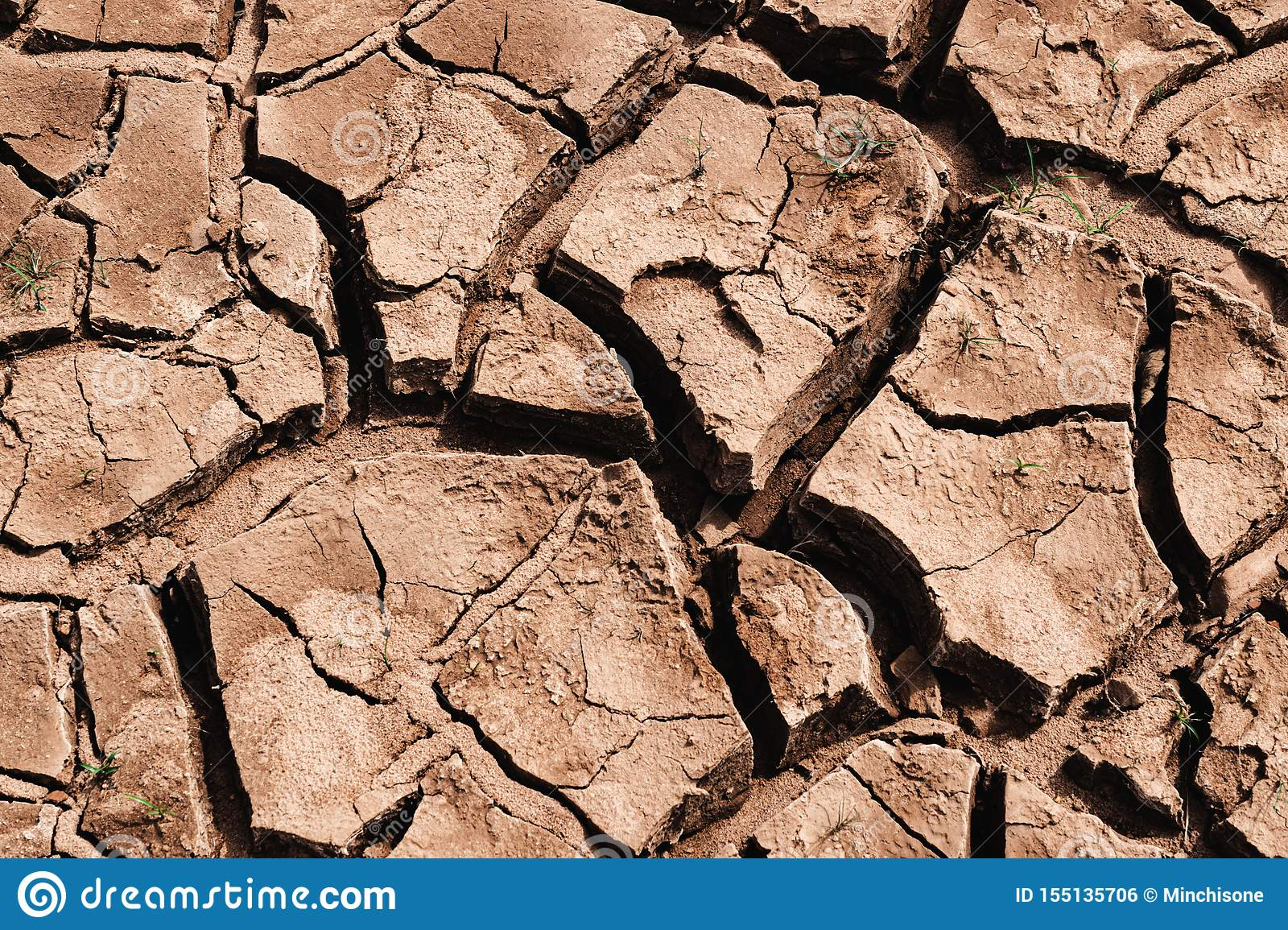 The desert global warming concept. global climate change cause trigger droughts