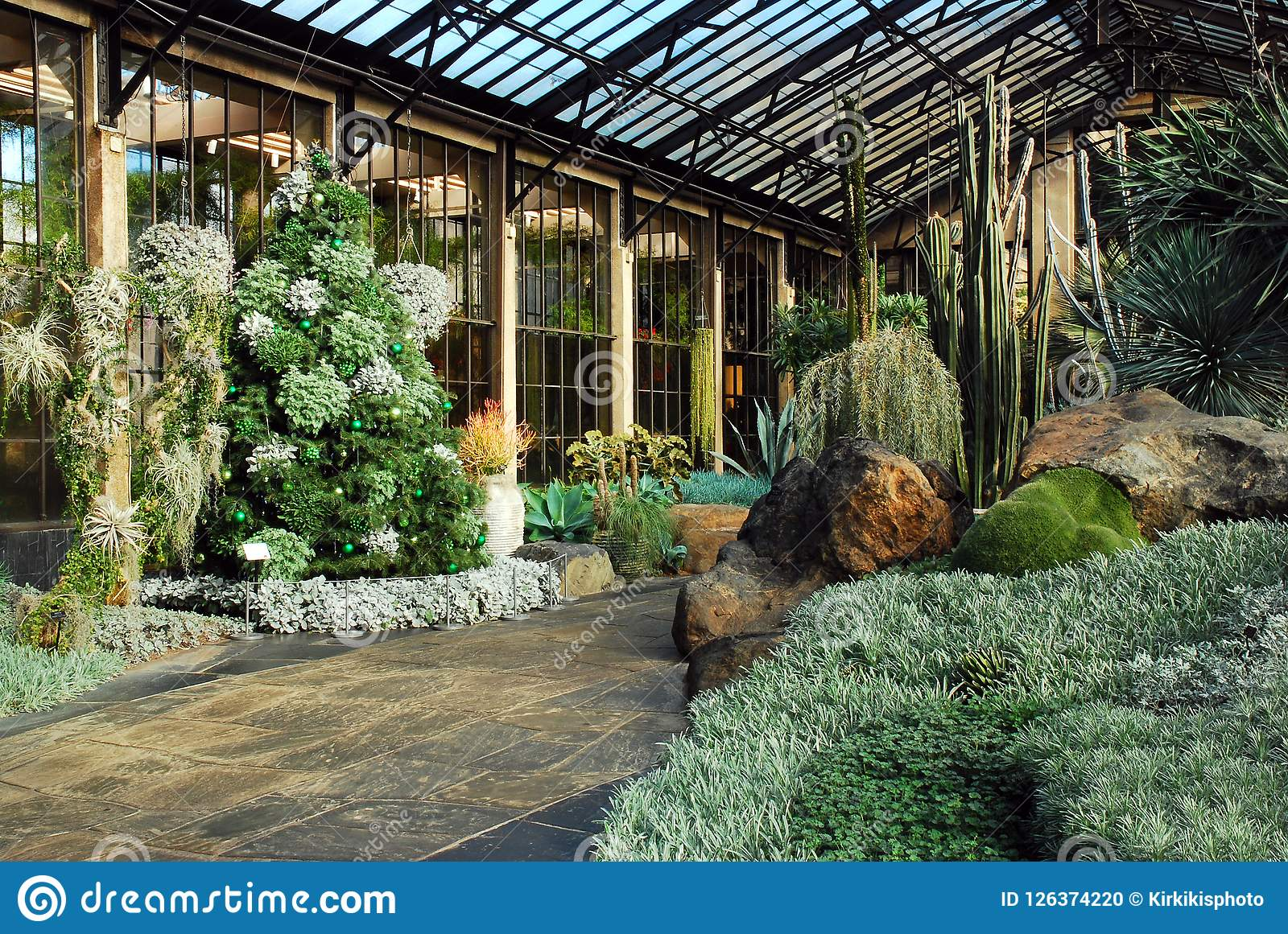 Magnificent Desert Greenhouse With Cactii Stock Photo Image Of History Home Interior And Landscaping Oversignezvosmurscom