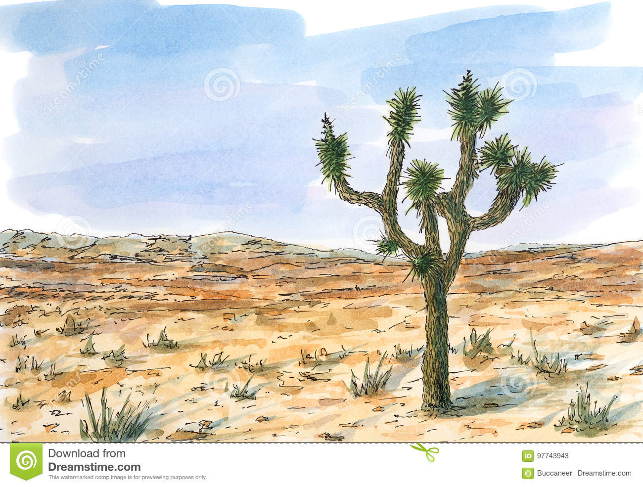 Joshua Tree Stock Illustrations 327 Joshua Tree Stock Illustrations Vectors Clipart Dreamstime Mtjp | joshua tree is the culmination of nearly a month spent exploring joshua tree national park. https www dreamstime com stock illustration desert landscape joshua tree yucca brevifolia ink watercolor rough paper image97743943