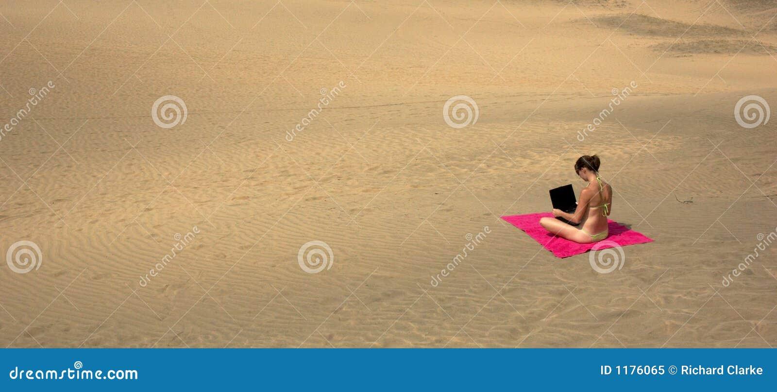 Desert Laptop Royalty Free Stock Photo Image 1176065