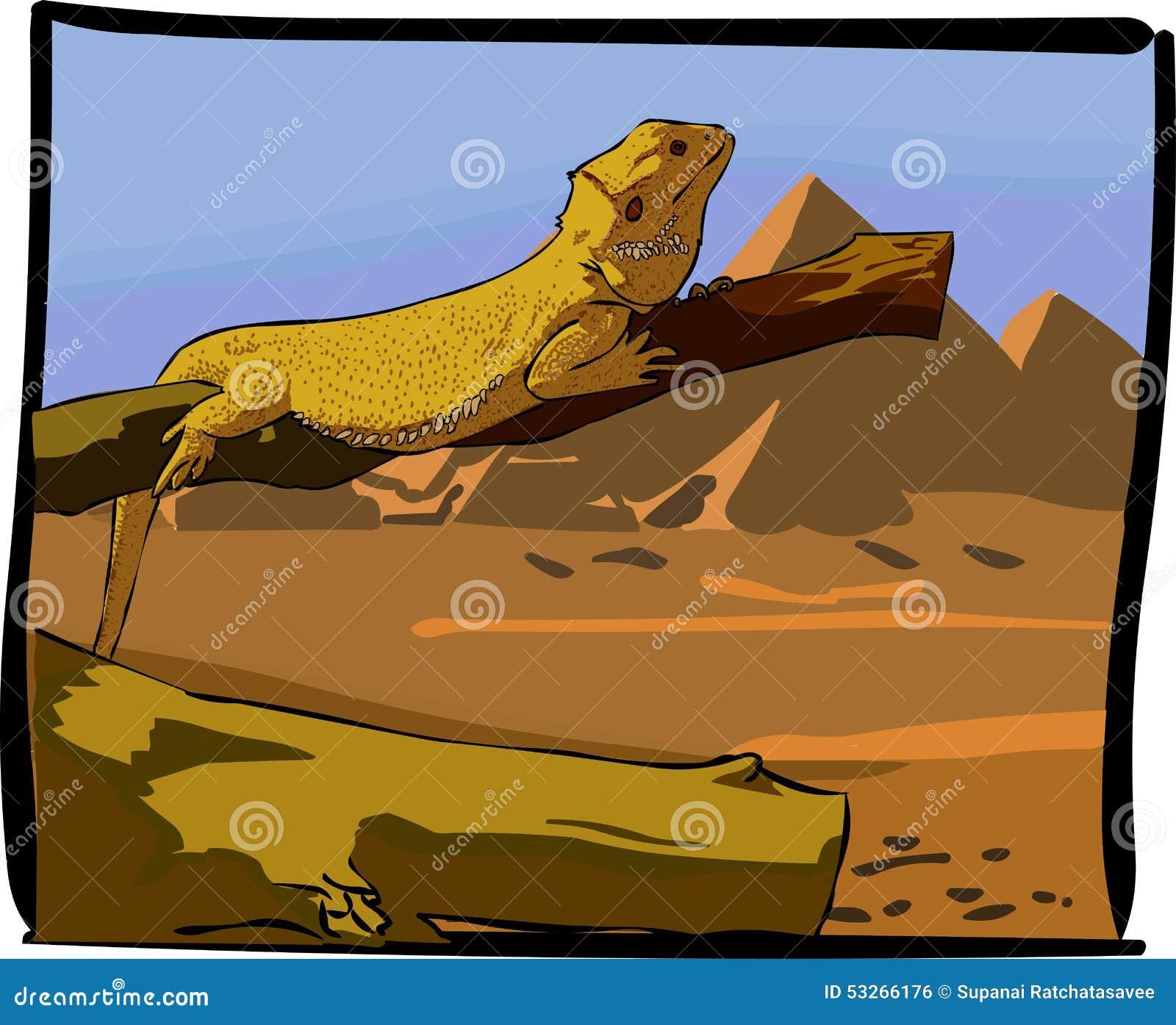 Desert lizards stock vector. Illustration of horizontal ...
