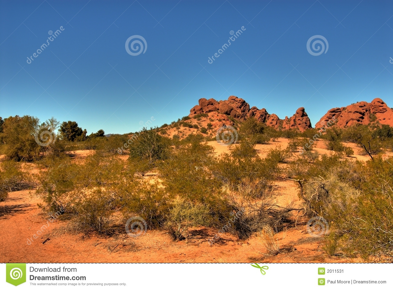 Download Desert Mountain 104 stock image. Image of prickly, sandstone - 2011531