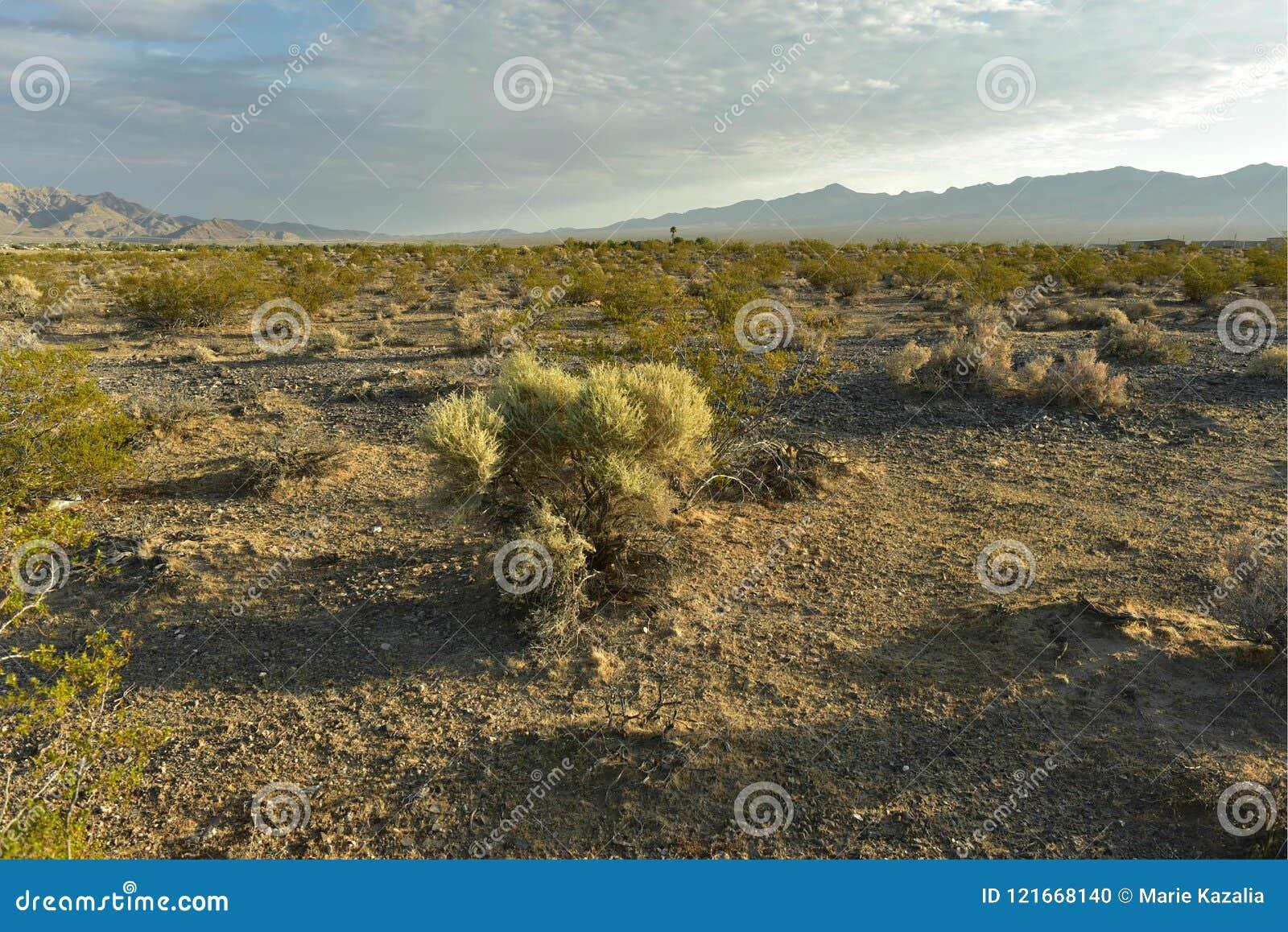 mojave desert landscape town of pahrump nevada usa stock photo