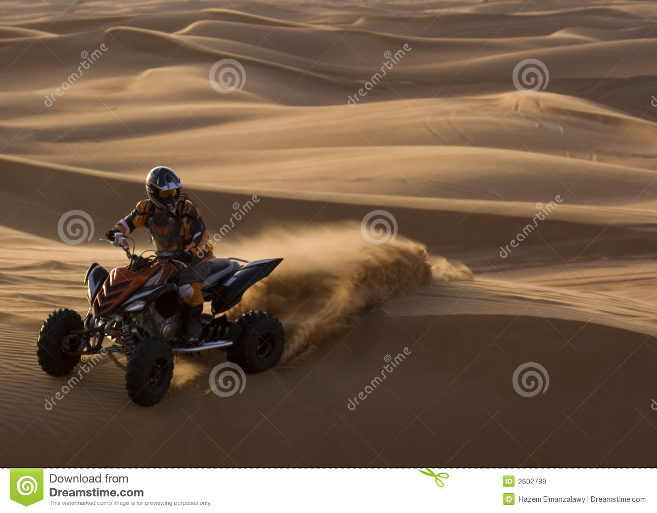 Desert Ranger in Action