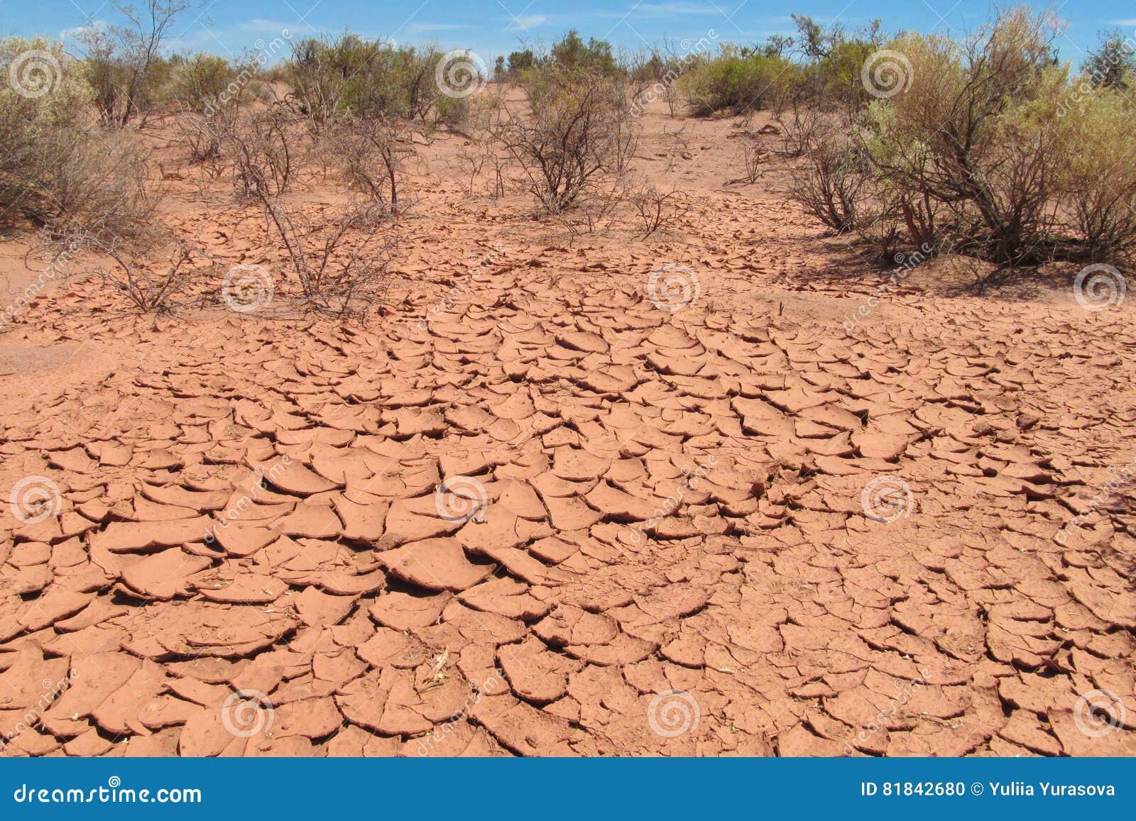 Desert Red Dry Soil, Plants On Desert Soil Stock Photo ...