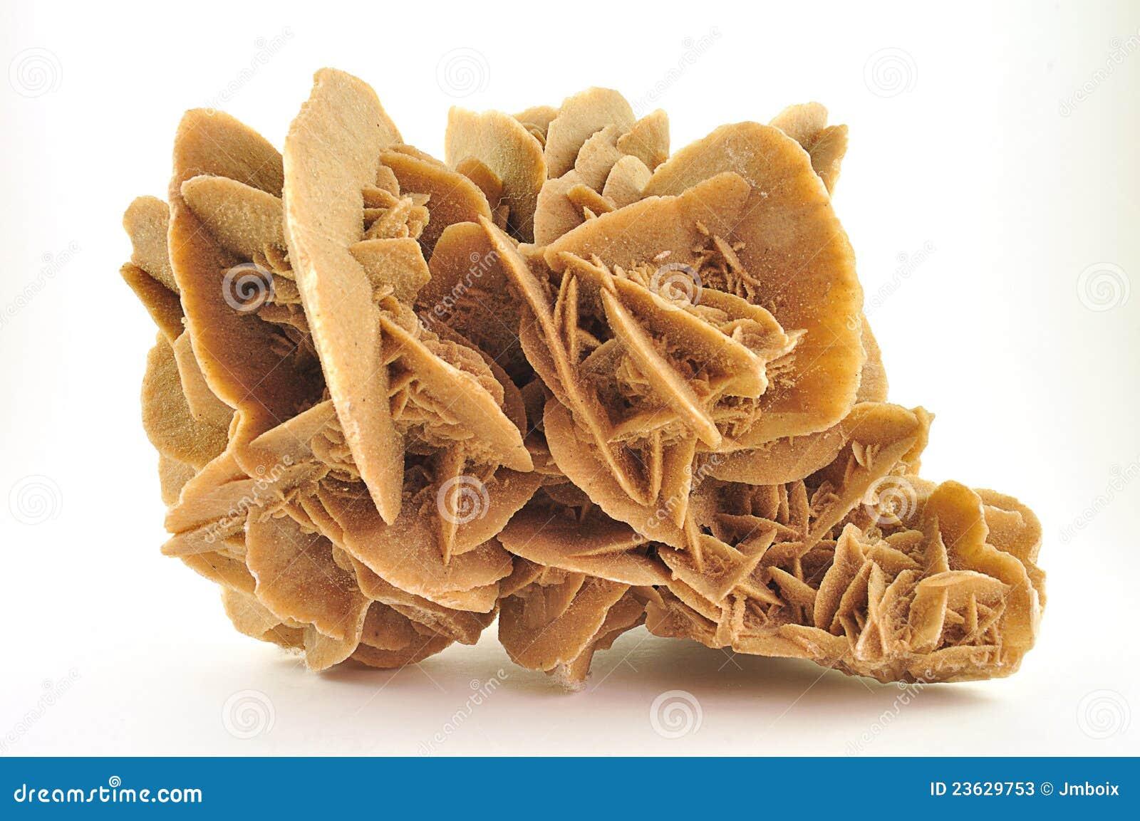 desert rose stock photos image 23629753. Black Bedroom Furniture Sets. Home Design Ideas