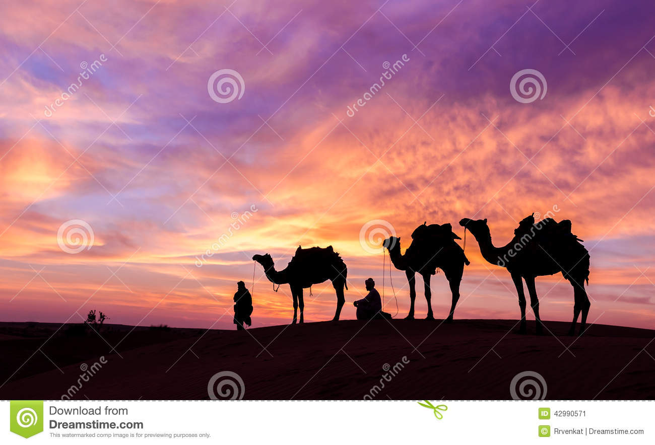 Desert scence with camel and dramatic sky
