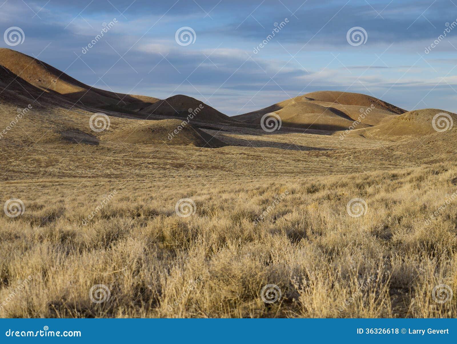 Desert Scenery Royalty Free Stock Photos Image 36326618