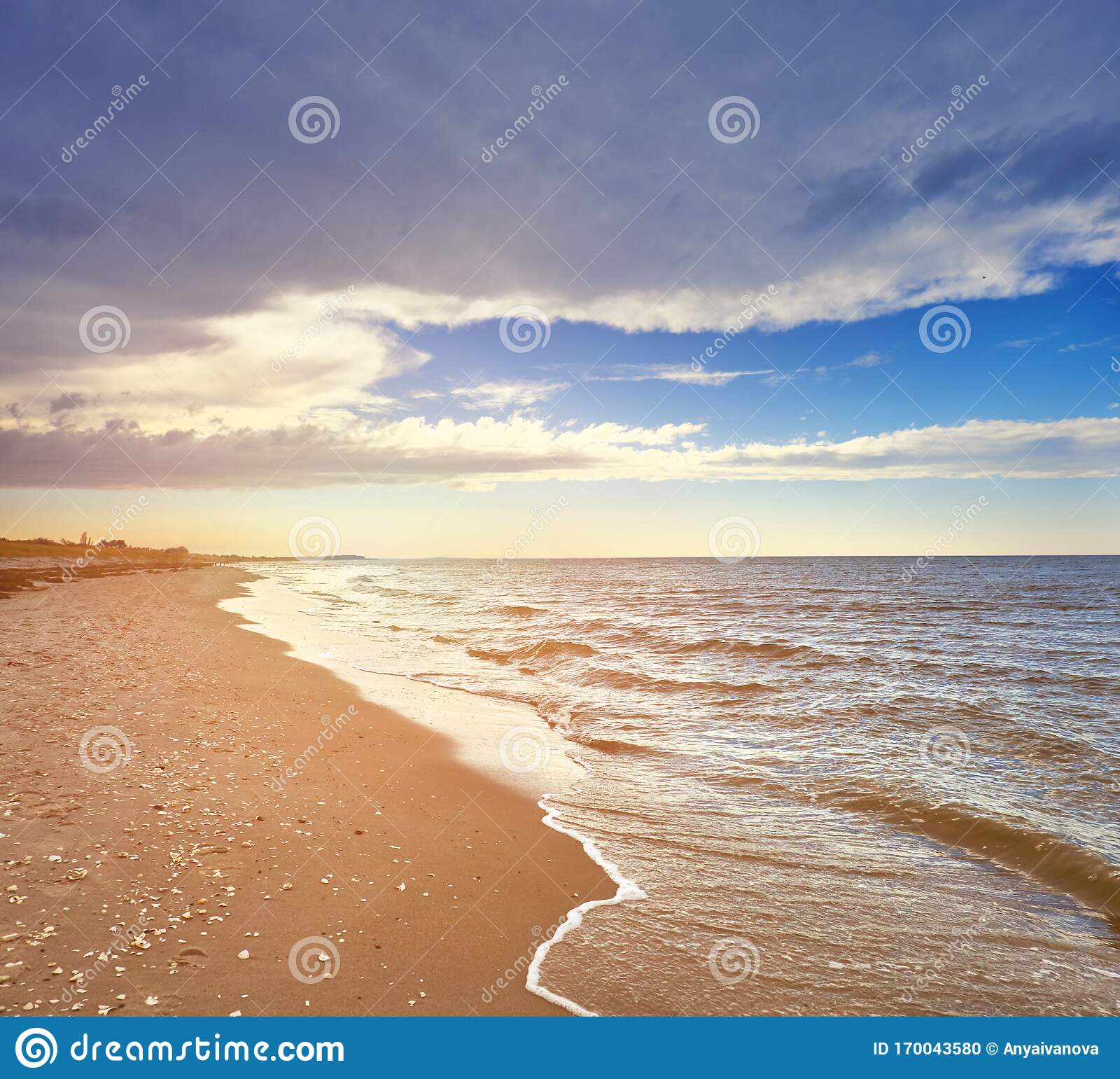 Deserted Island Beach: Deserted Beach On Island Hiddensee In Northern Germany