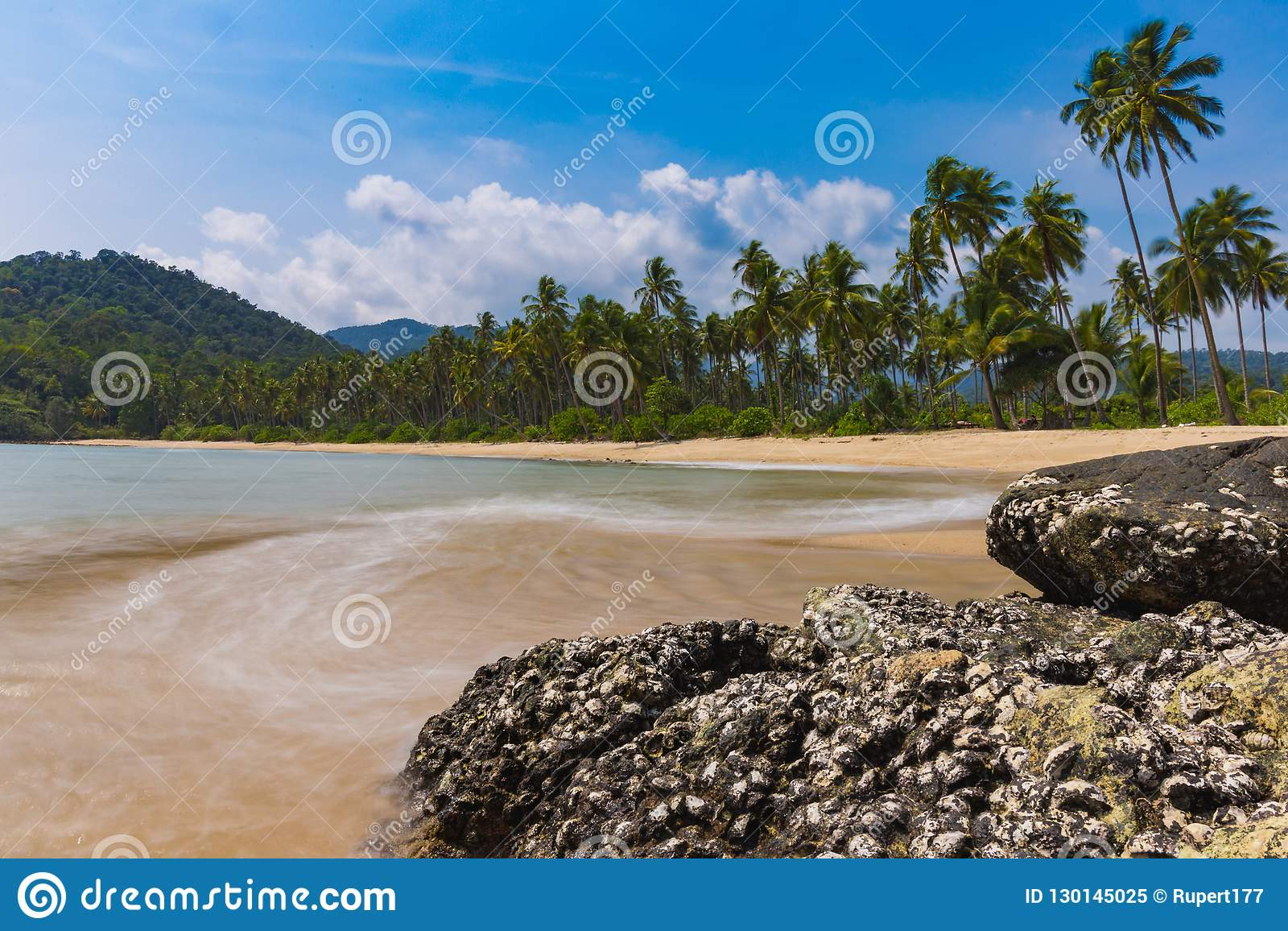 Deserted island beach with palm trees and blurred waves.