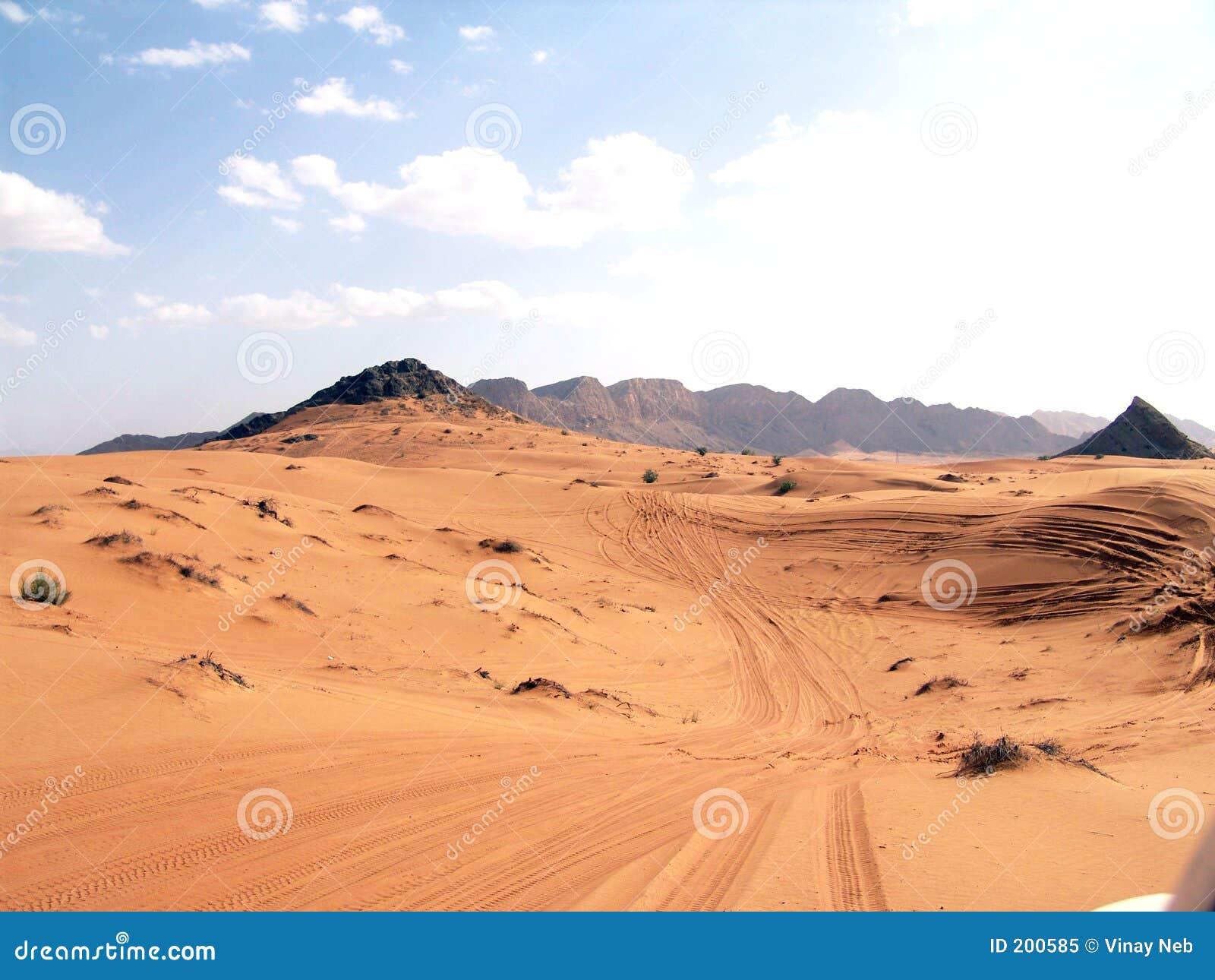 Deserto bello