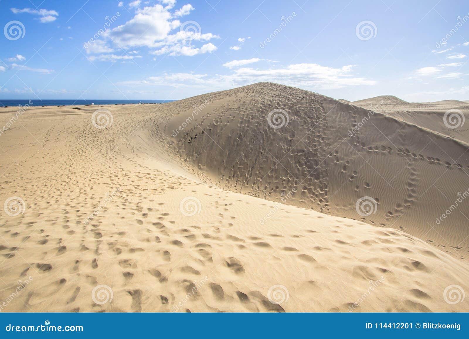 Deserto della duna di sabbia di Maspalomas, grande Canaria