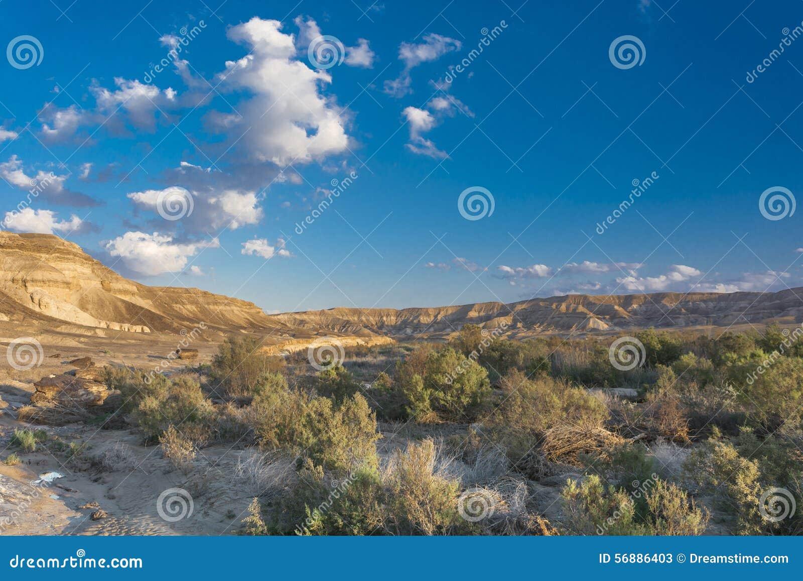 Deserto di Negev