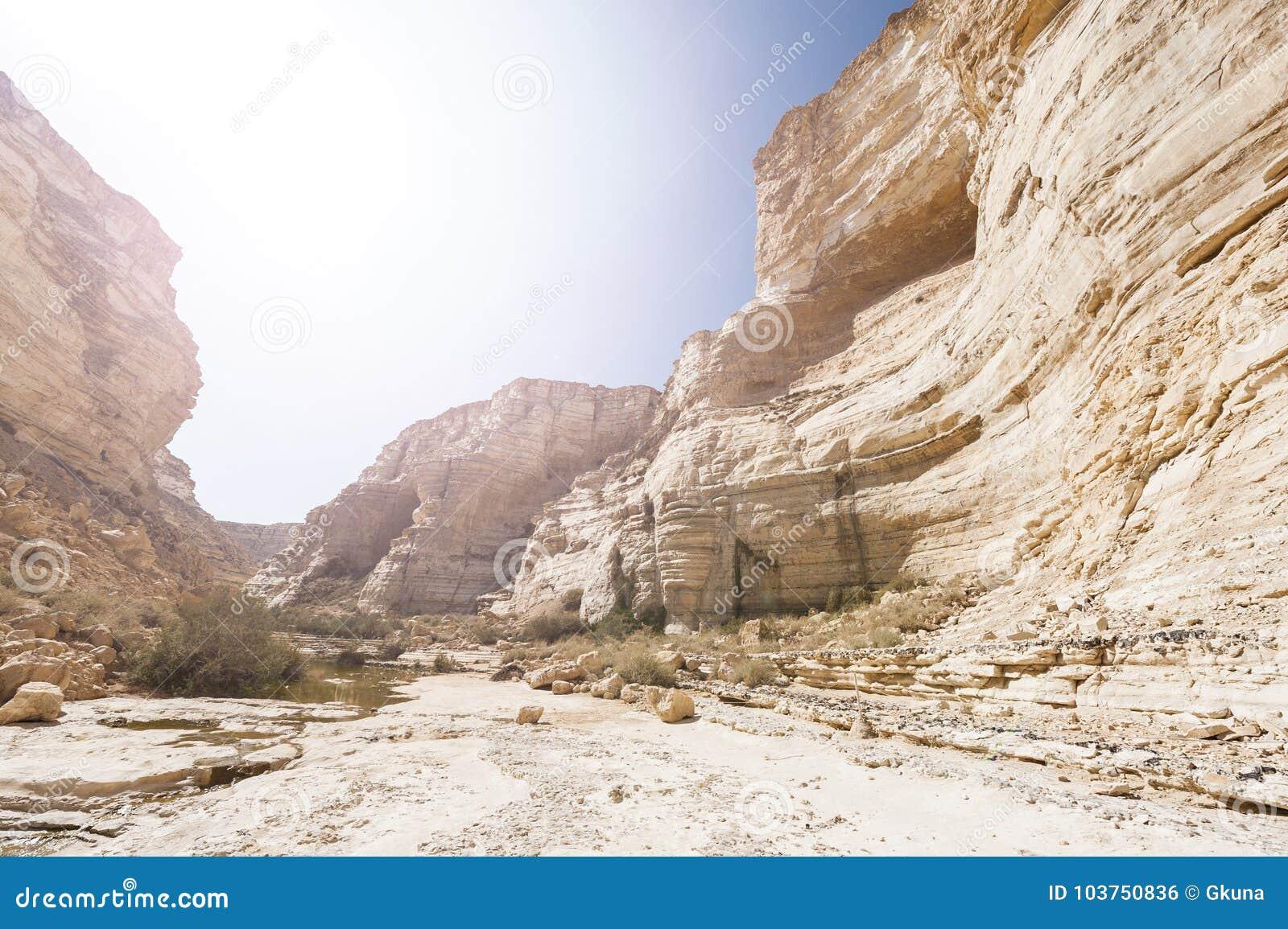 Deserto em Israel no nascer do sol