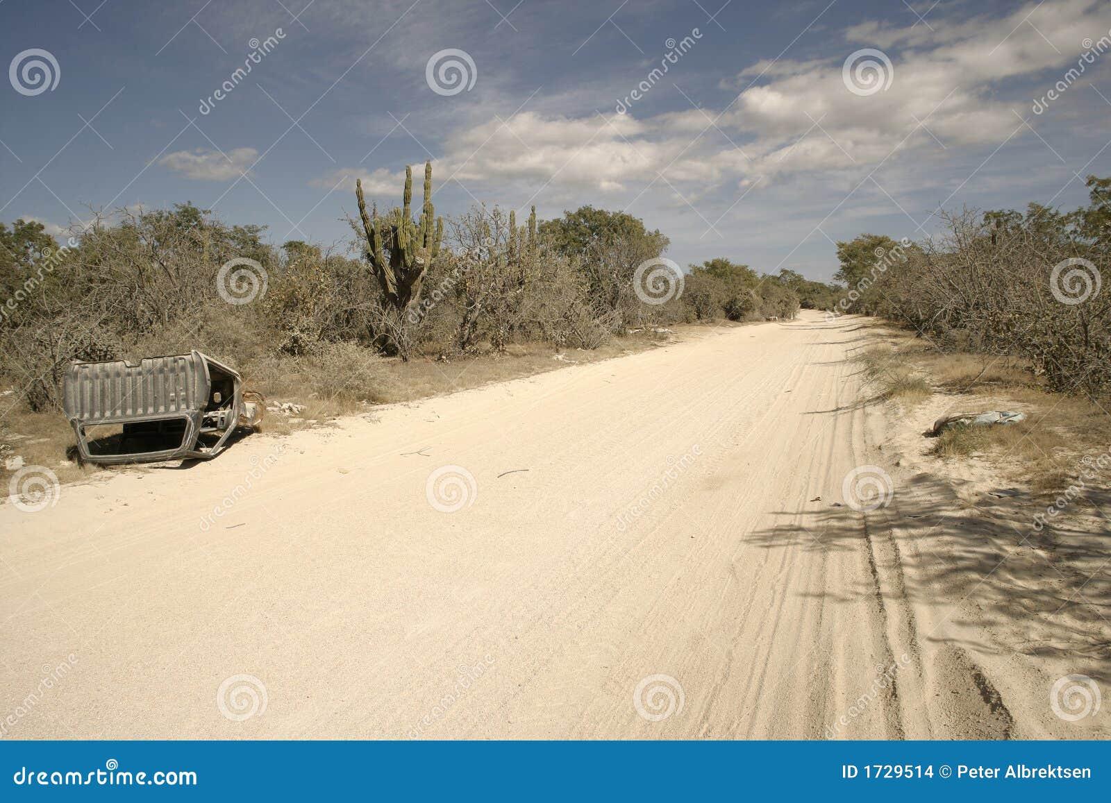 Deserto messicano