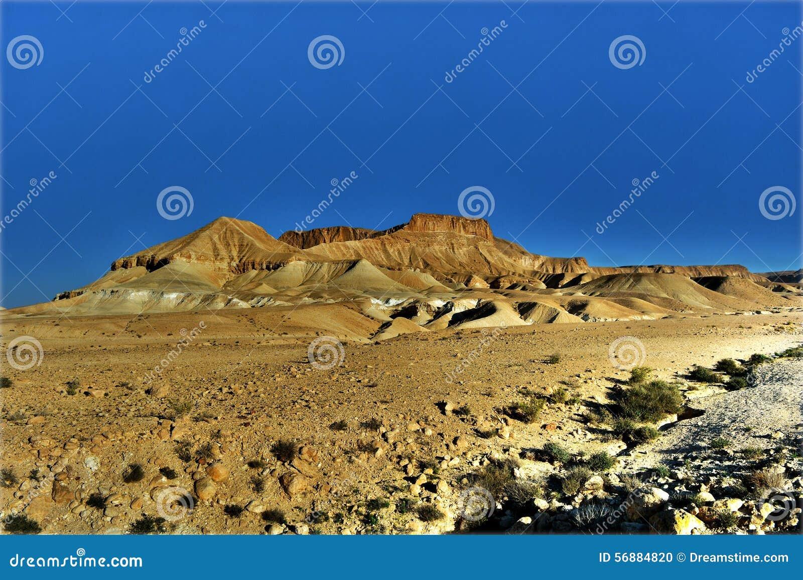 Deserto Negev
