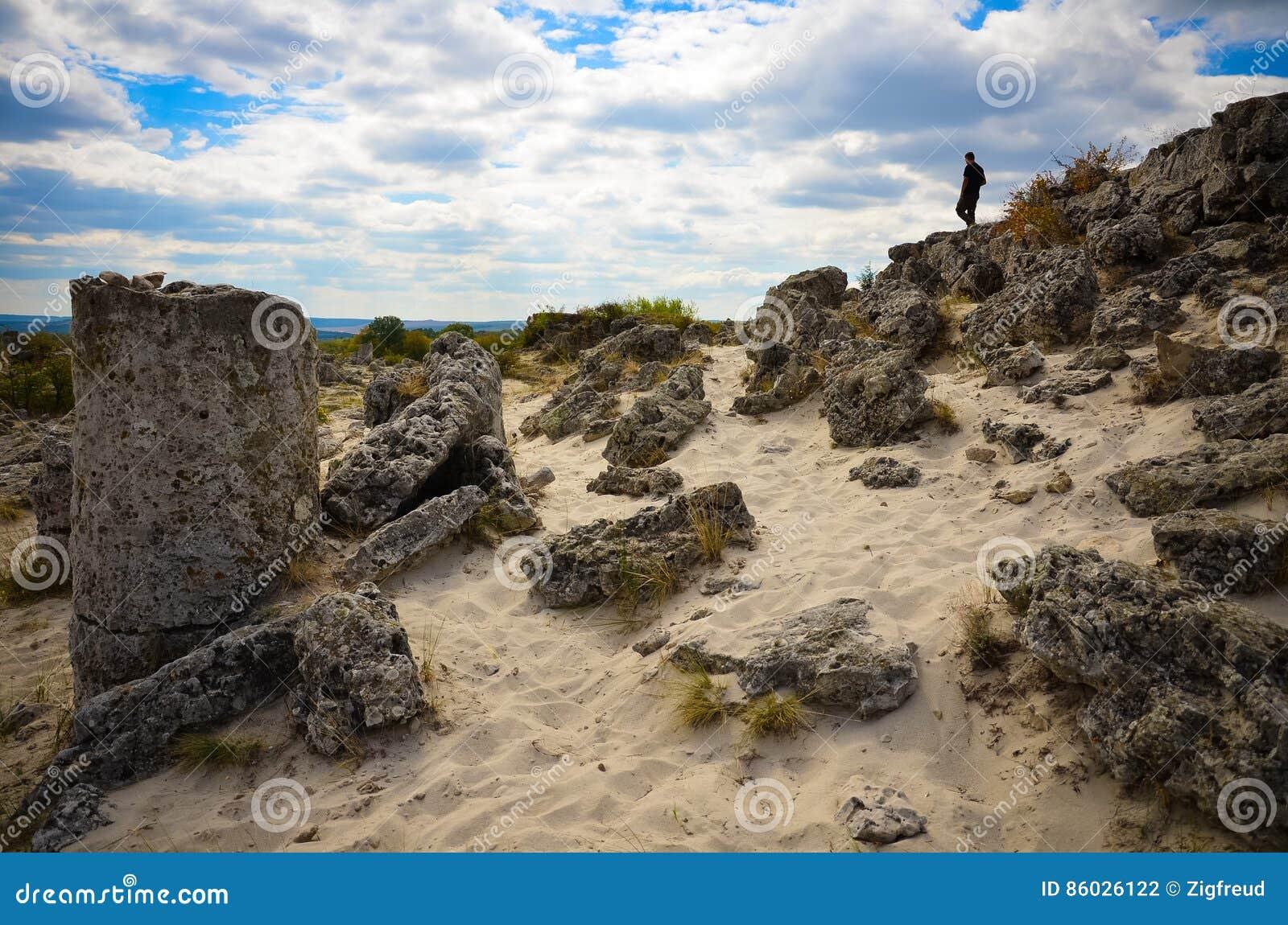 Deserto Varna Bulgária da pedra de Forest The da pedra de Pobiti Kamani