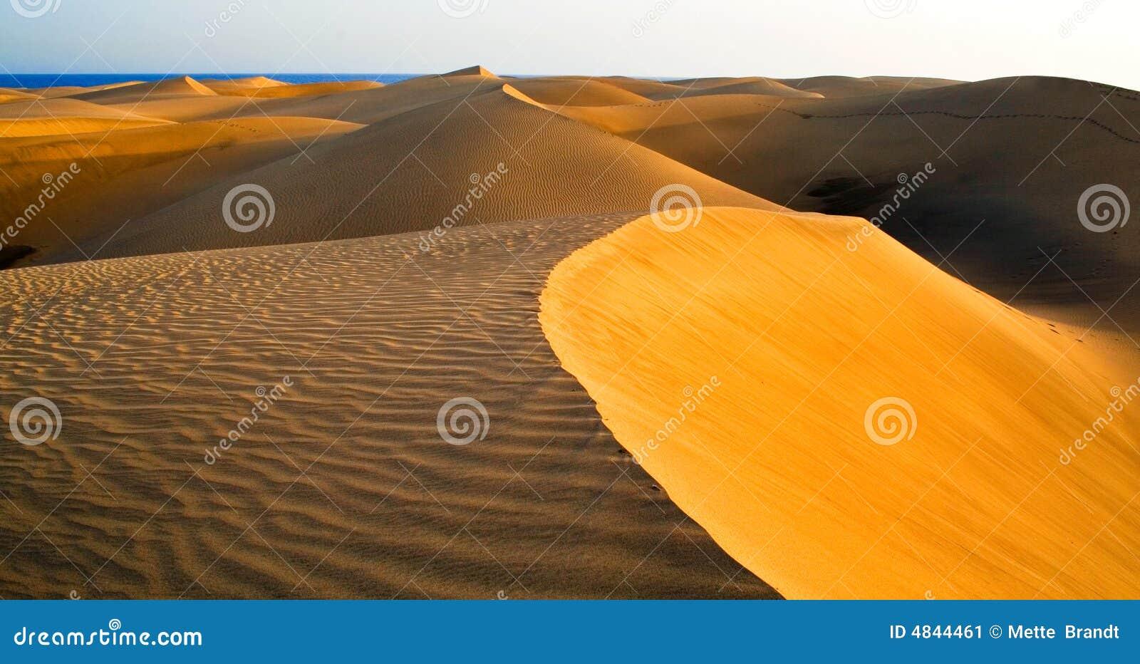 Desierto de Maspalomas en Gran C