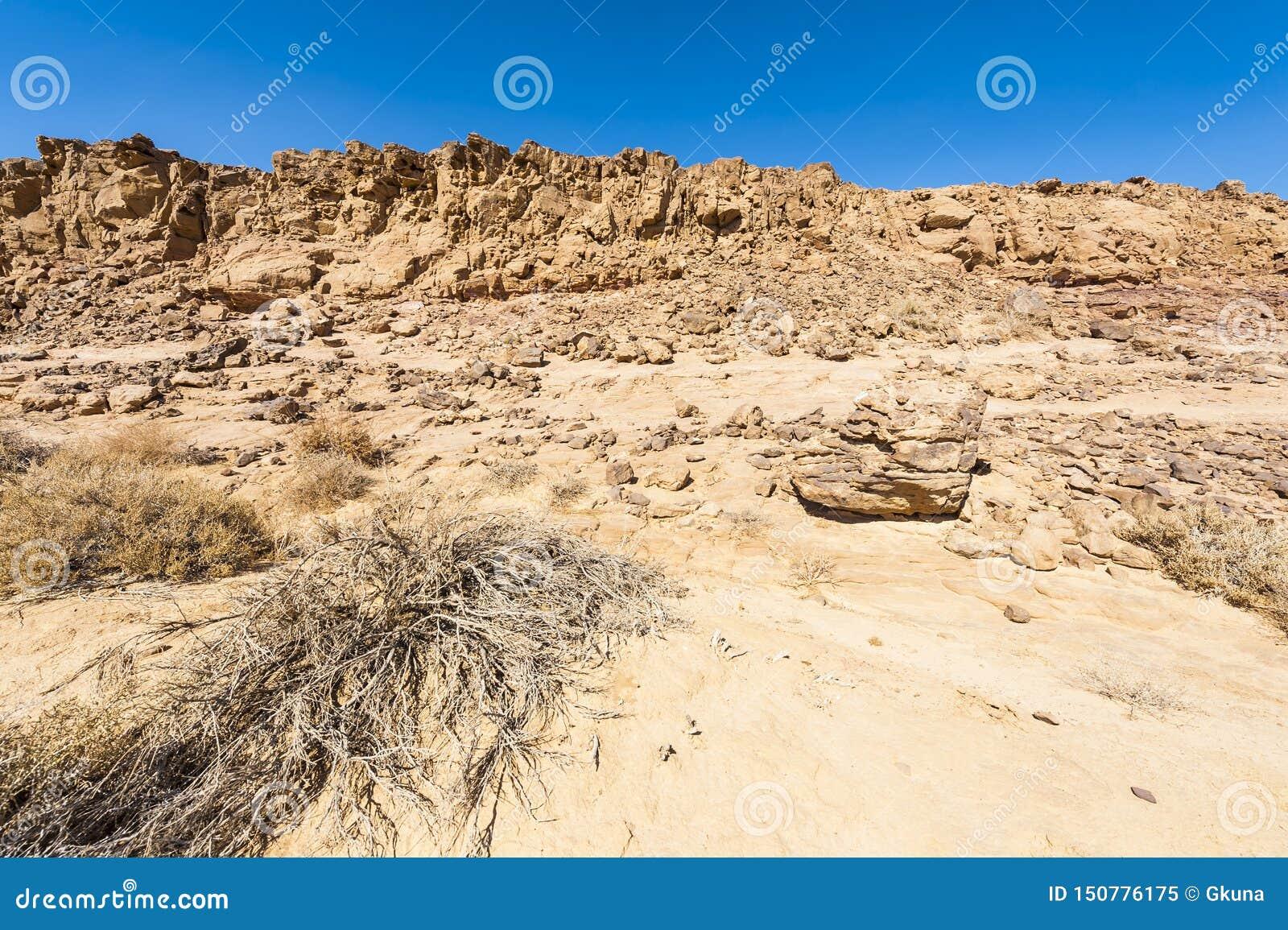 Desierto del N?guev en Israel