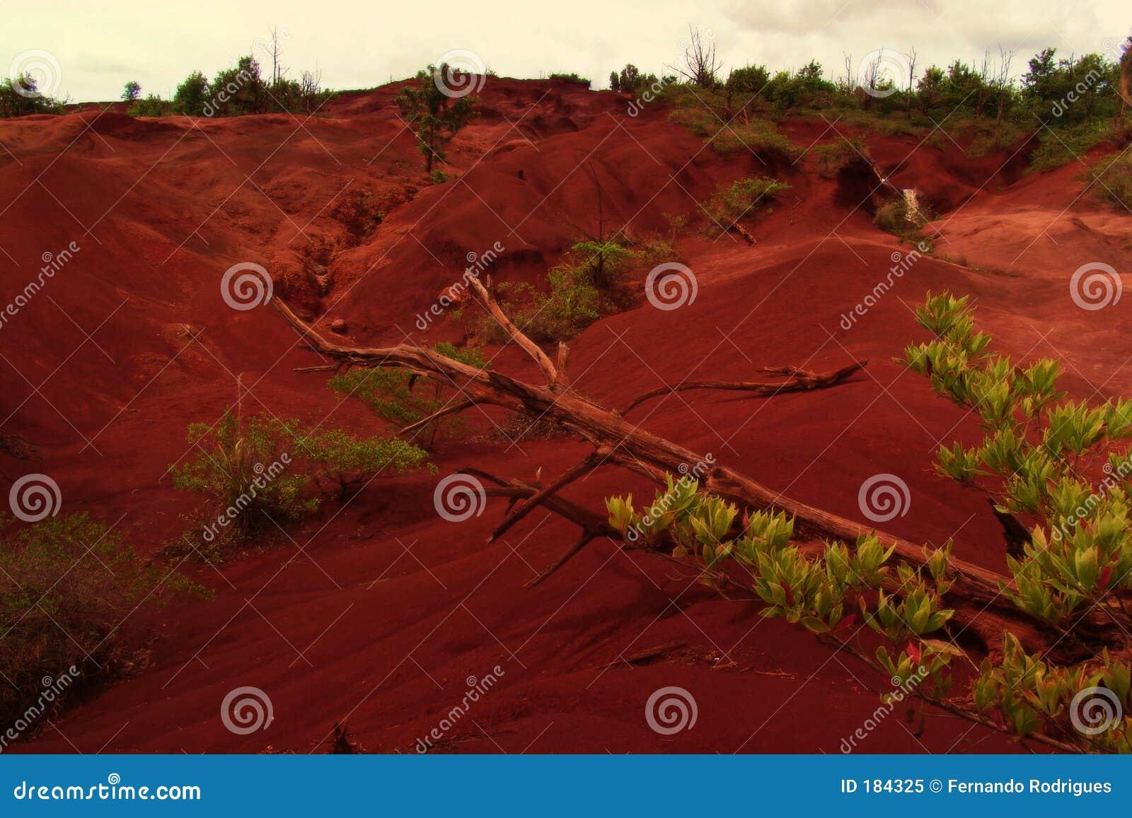 Desierto hawaiano