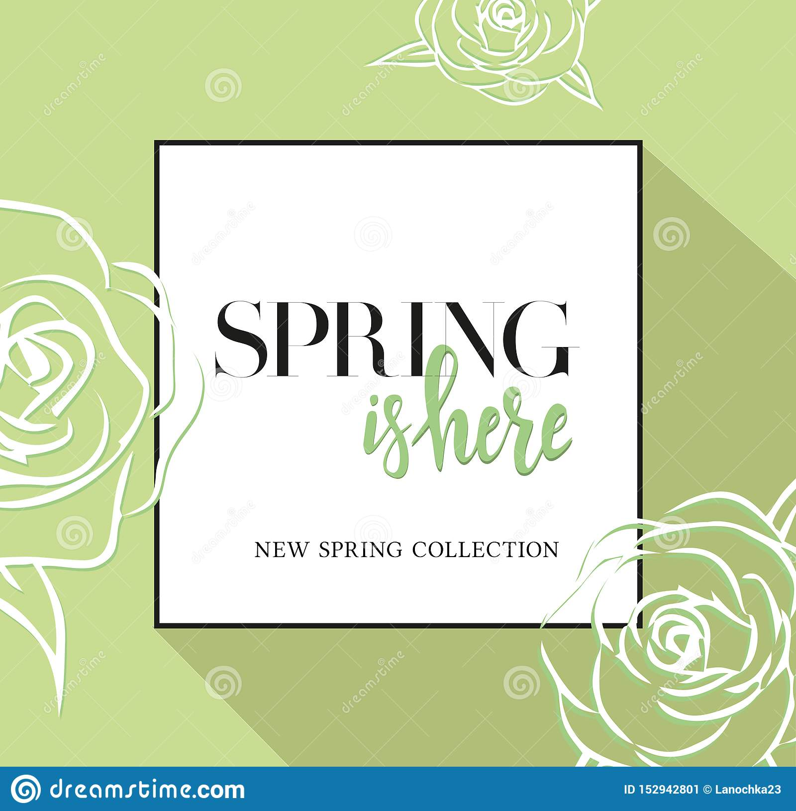 Design banner with lettering spring is here logo. Greenc ard for spring season with black frame and rose. Promotion offer with