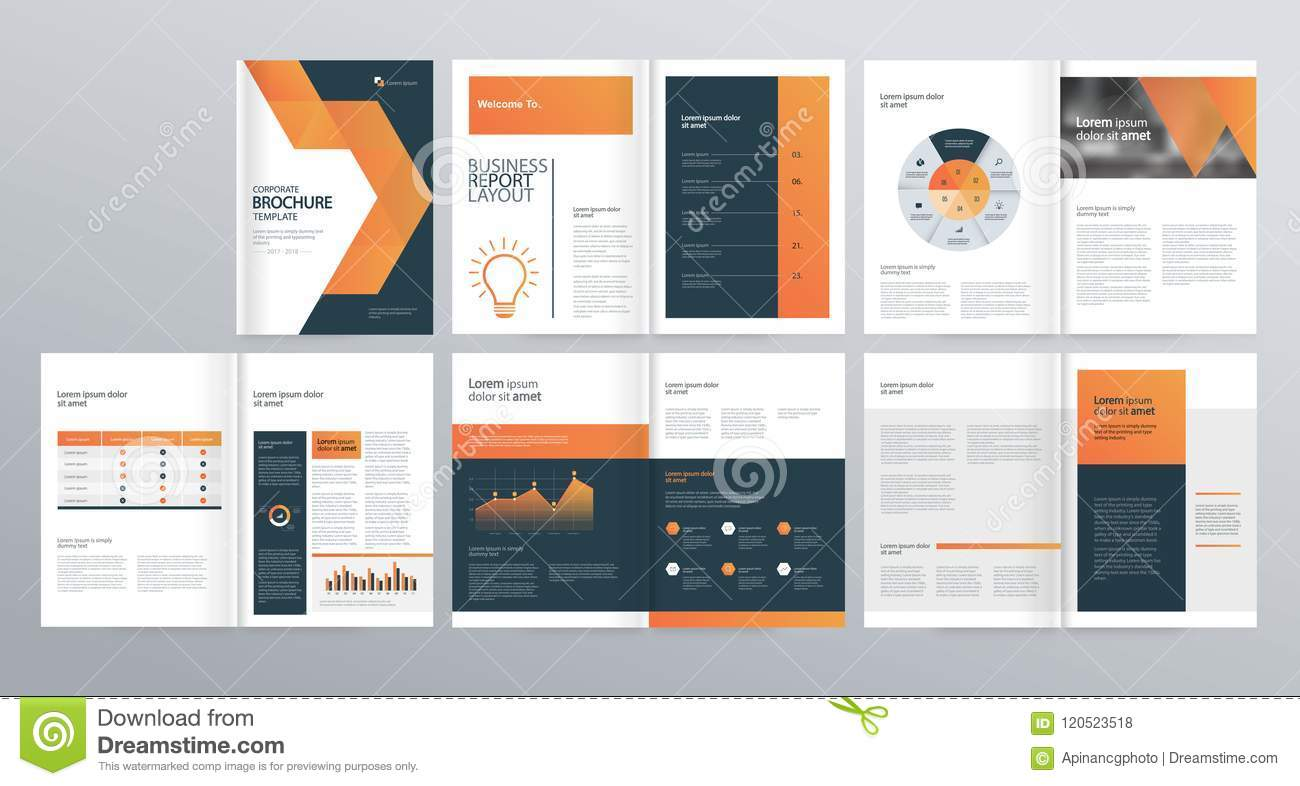 Design Layout Template For Company Profile  Annual Report   Brochures  Flyers  Stock Vector