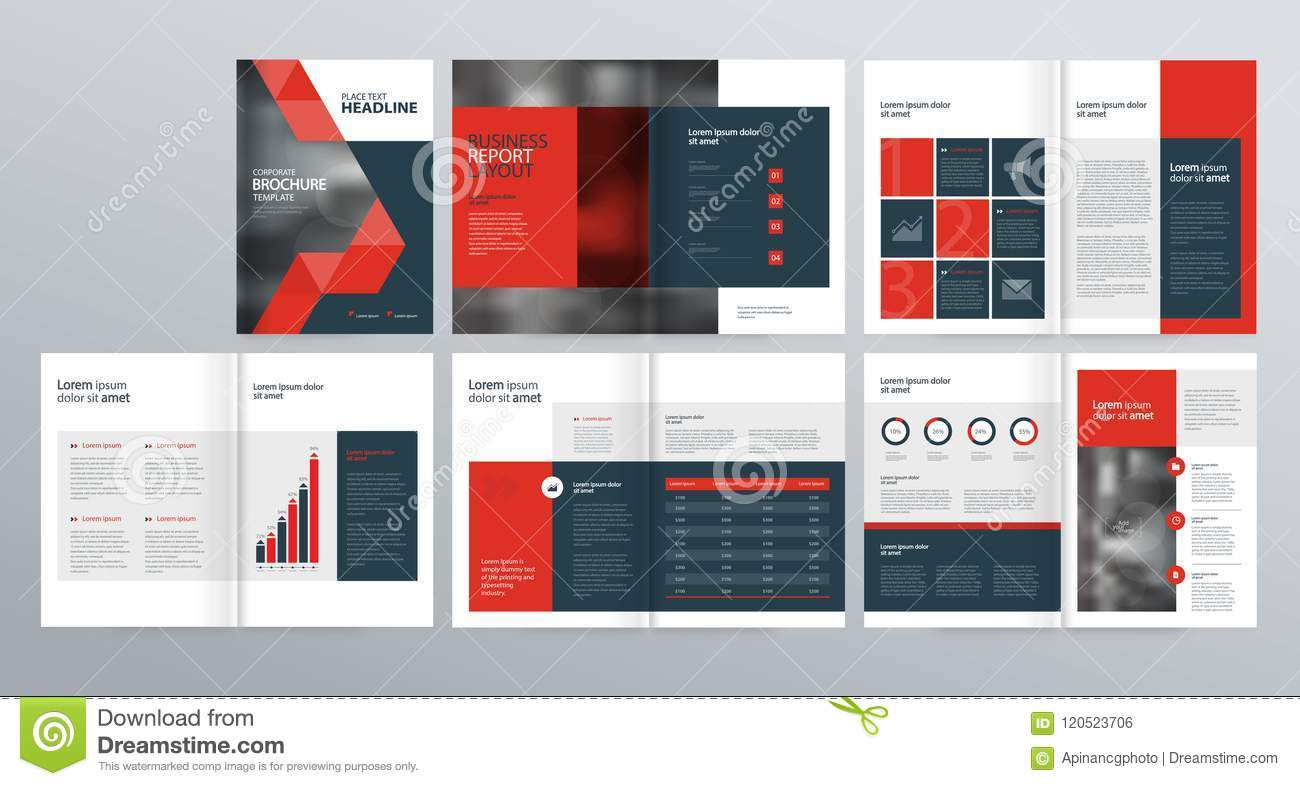 Design Layout Template For Company Profile  Annual Report   Brochures  Flyers  Stock