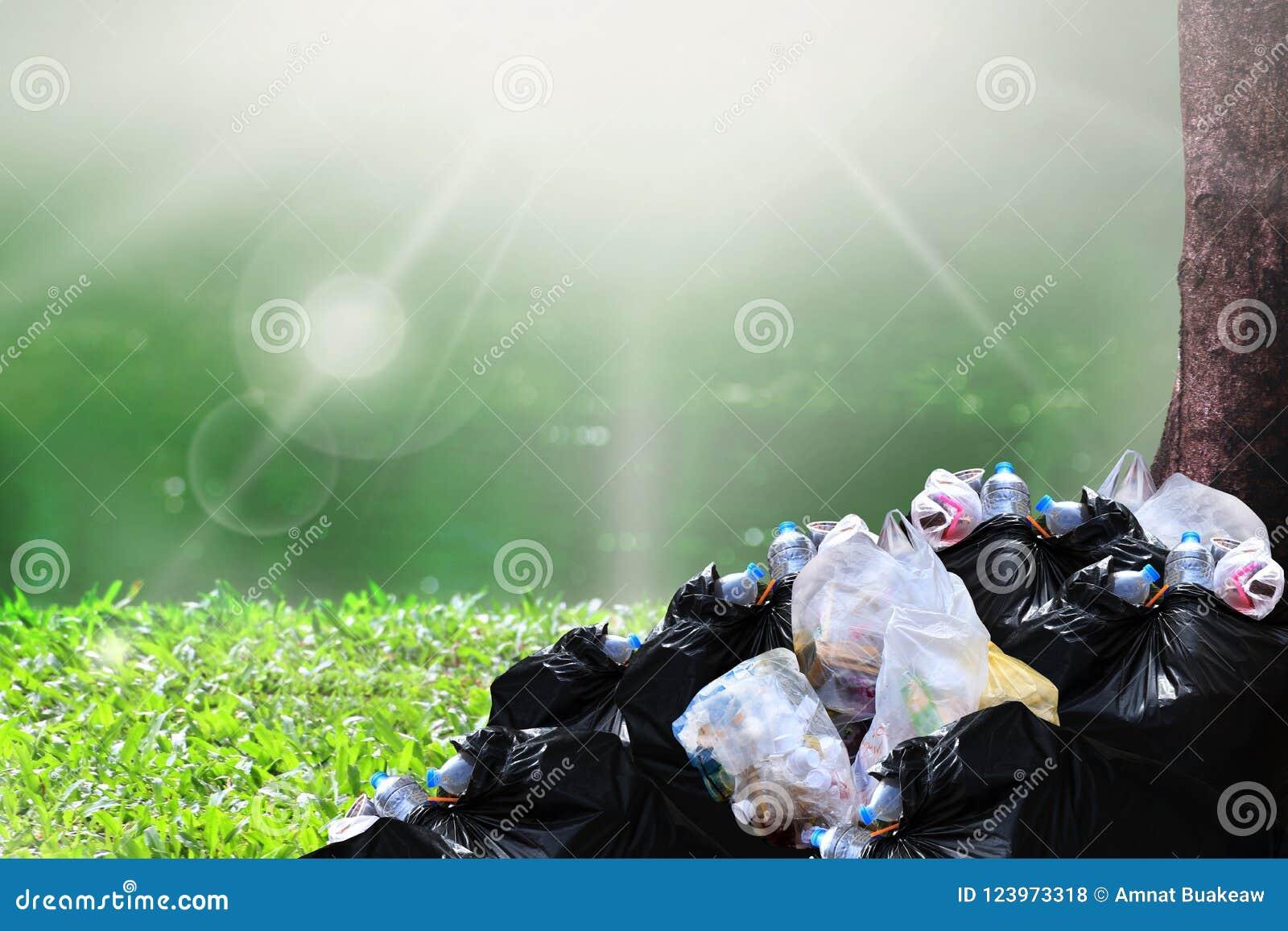 Desperdício do lixo, montão do preto do desperdício do plástico do lixo e saco de lixo muitos no fundo da luz do sol da árvore da