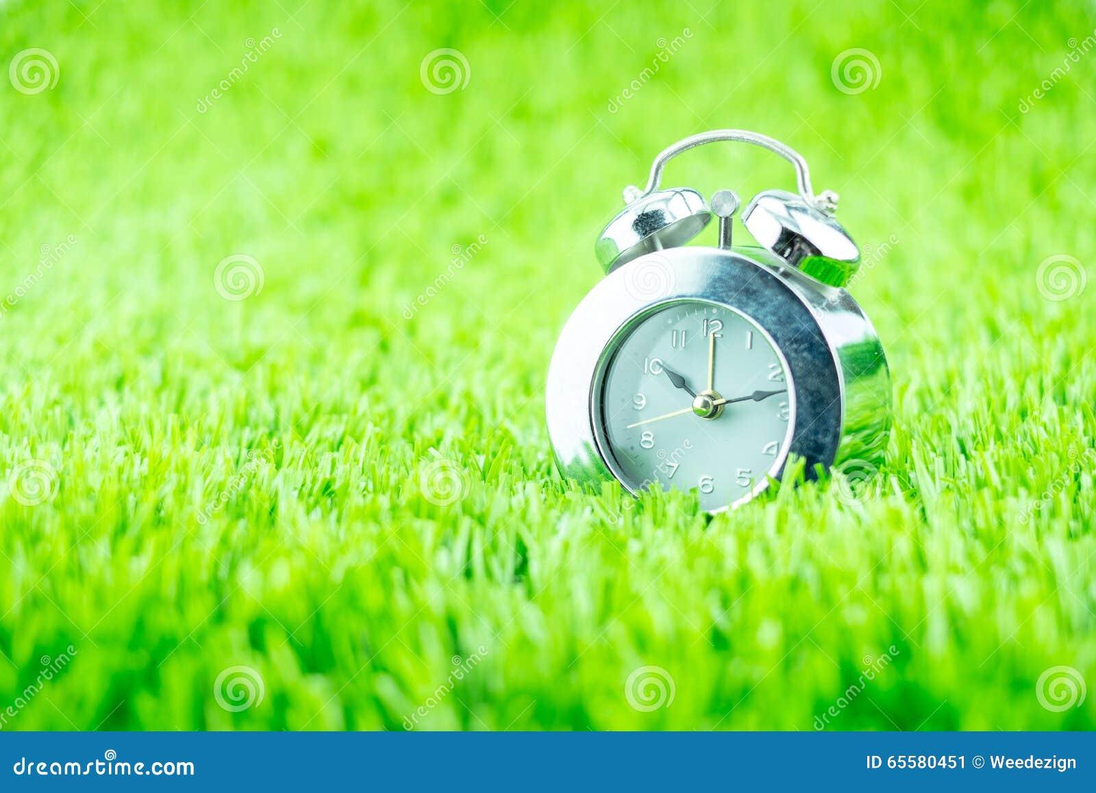 Despertador de prata na grama verde