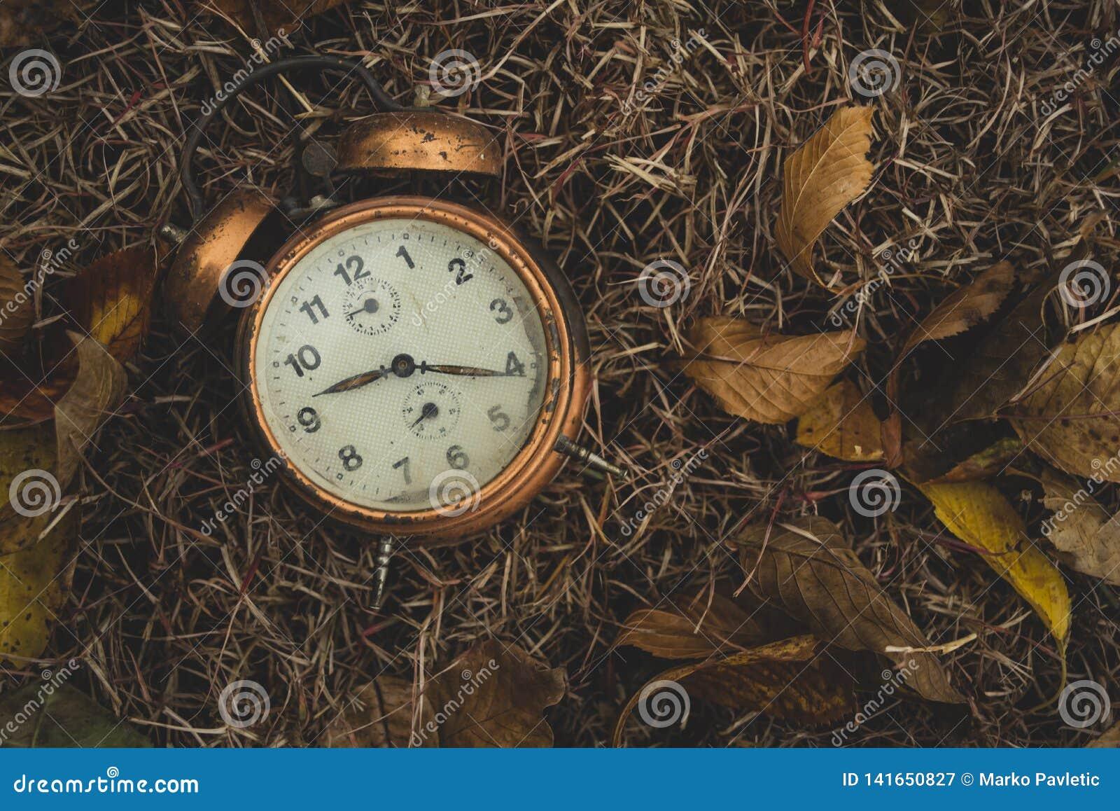 Despertador viejo en las hojas