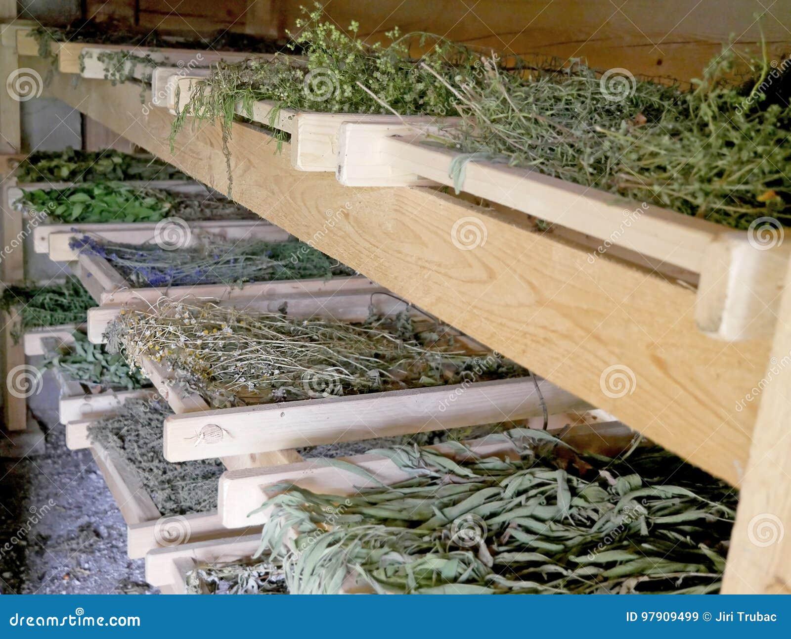 Dessiccateur traditionnel pour les herbes et les épices de séchage