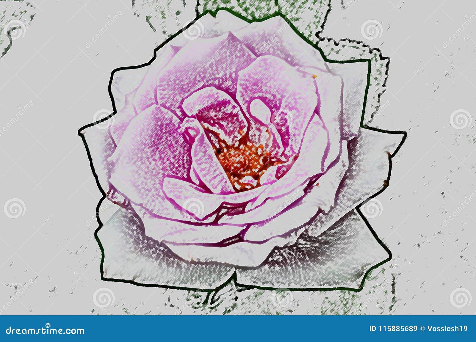 Dessin Abstrait D Une Fleur D Une Rose Imitant Le Dessin Par Un