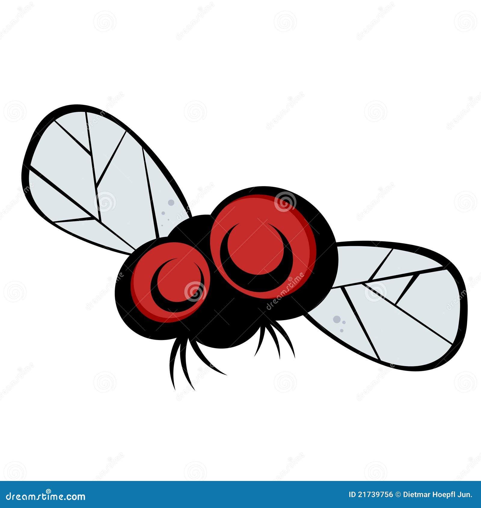 Dessin anim bug eyed de mouche image libre de droits - Dessin de mouche ...