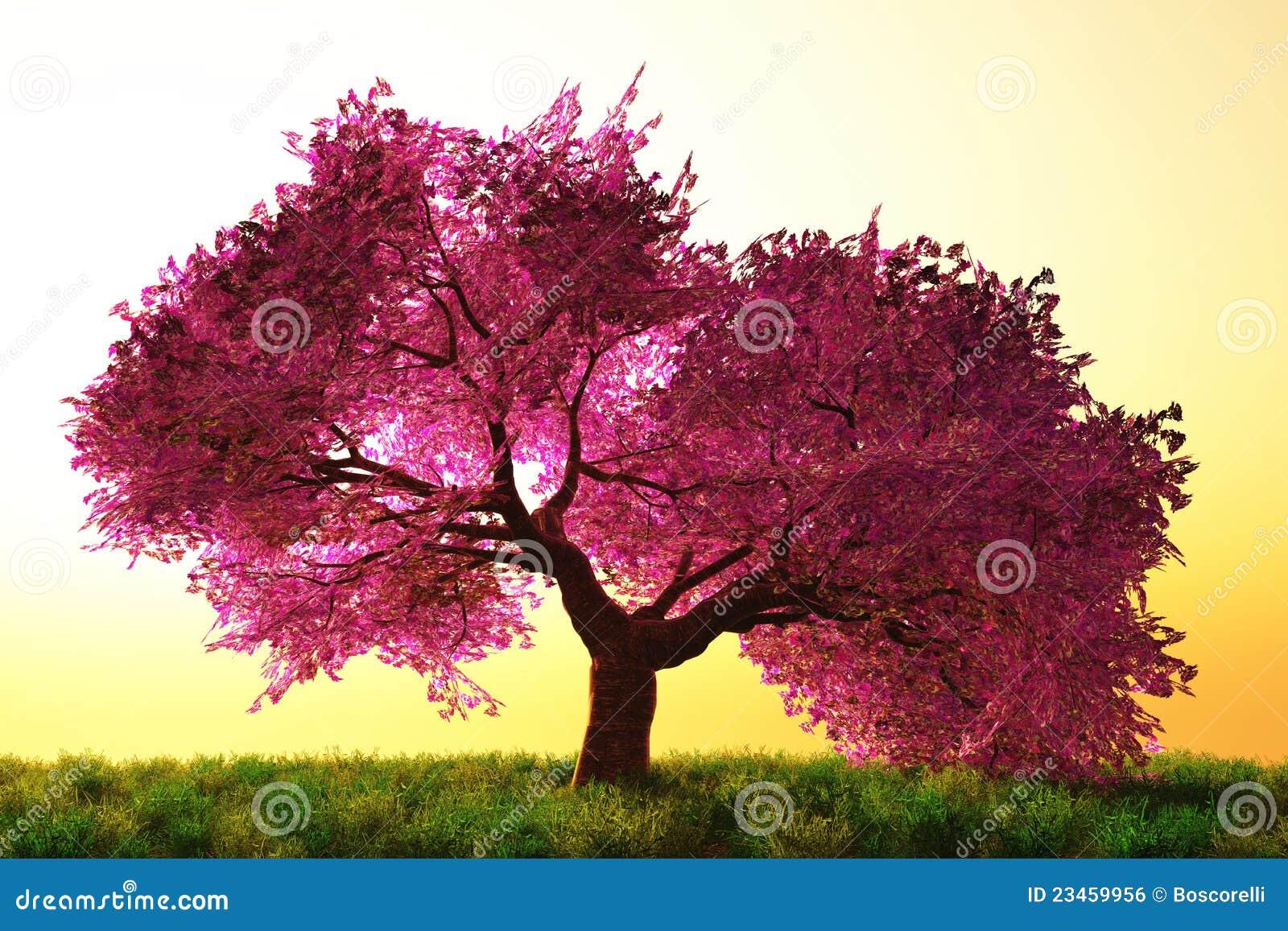 Dessin anim japonais myst rieux de jardin de fleurs de cerise image libre de droits image - Dessin arbre japonais ...