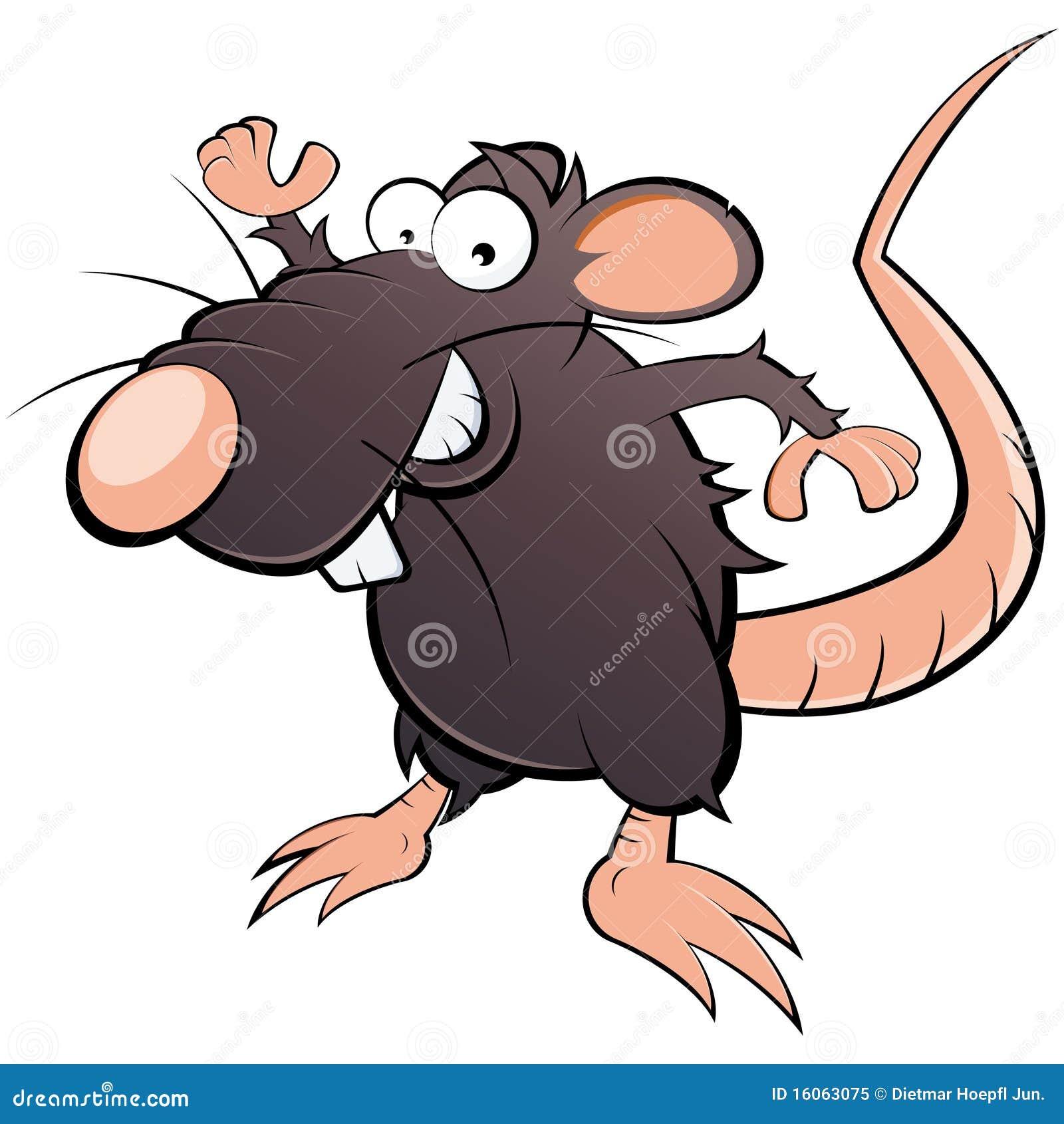 Dessin anim plein d 39 humour de rat illustration de vecteur - Dessin d un rat ...