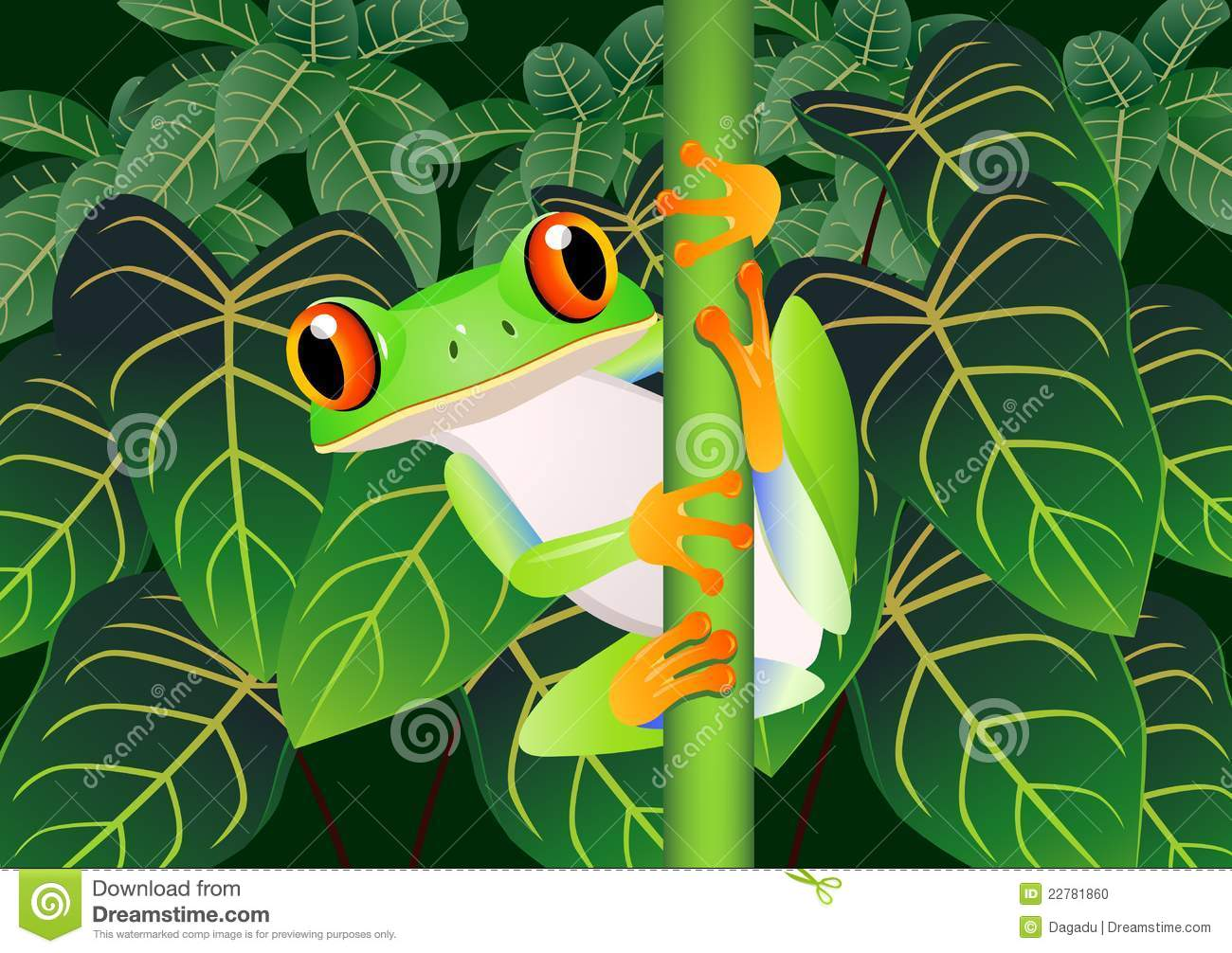 Photo stock frog cartoon image 22781860 - Dessin de grenouille marrante ...
