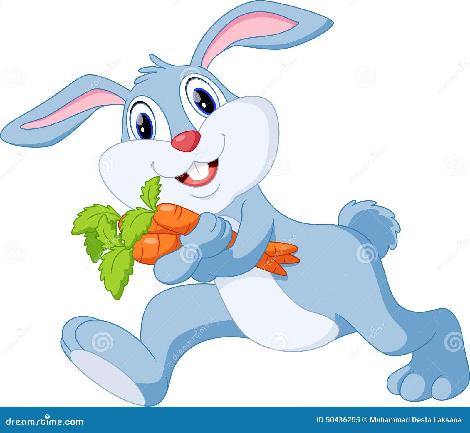 Dessin anim mignon de lapin illustration stock image 50436255 - Lapin mignon dessin ...