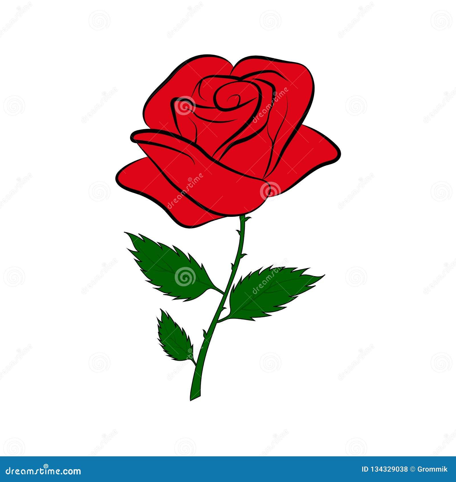 Dessin Coloré Simple D Une Rose Rouge Sur Une Tige Verte