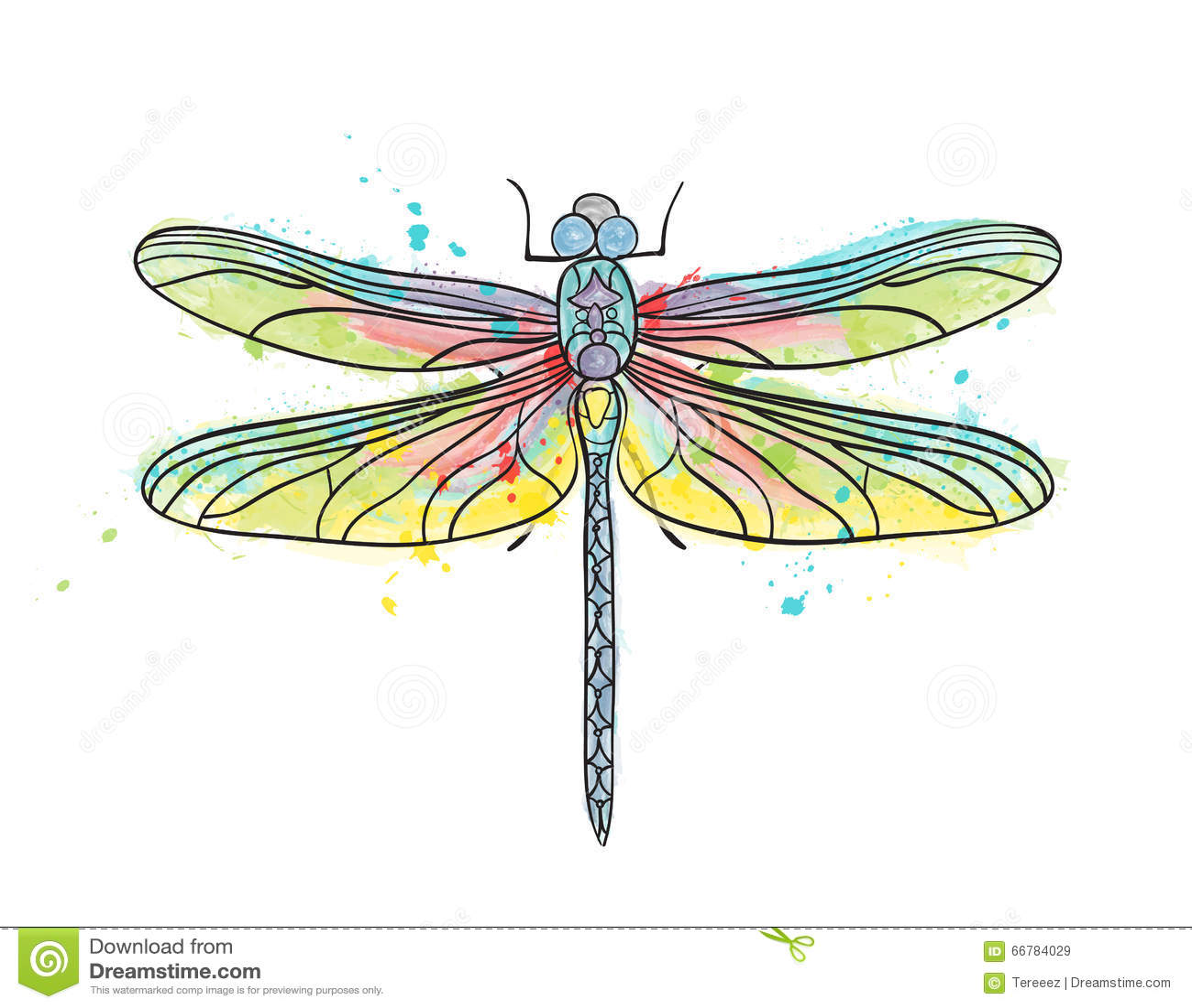 Dessin d 39 isolement d 39 aquarelle de libellule illustration - Libellule dessin ...