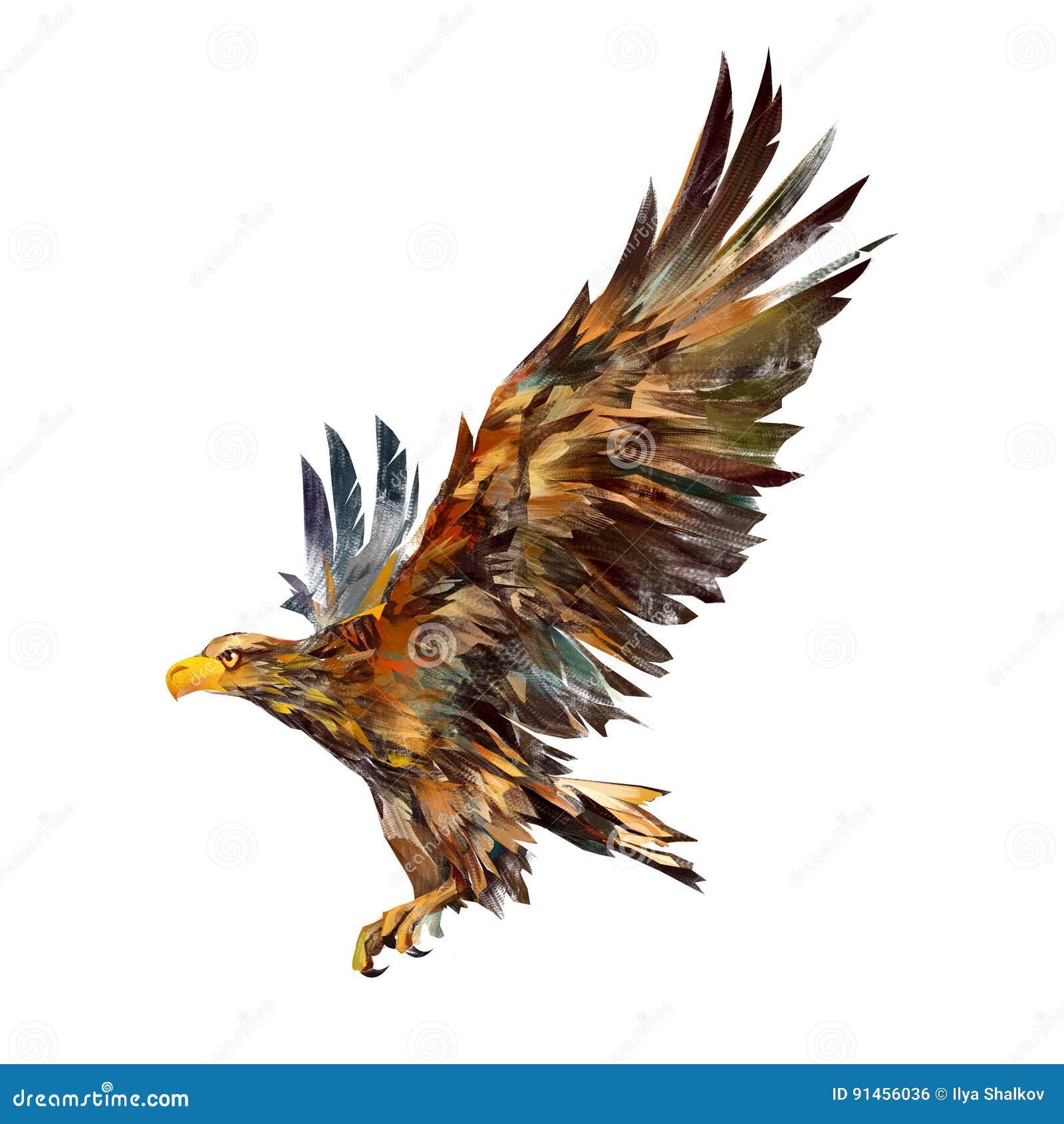 Dessin d 39 isolement d 39 un aigle de vol du c t illustration - Dessin de aigle ...