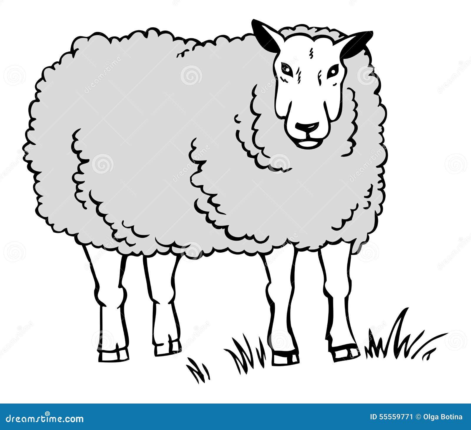 Dessin d 39 un mouton illustration de vecteur illustration du herbe 55559771 - Dessin mouton ...