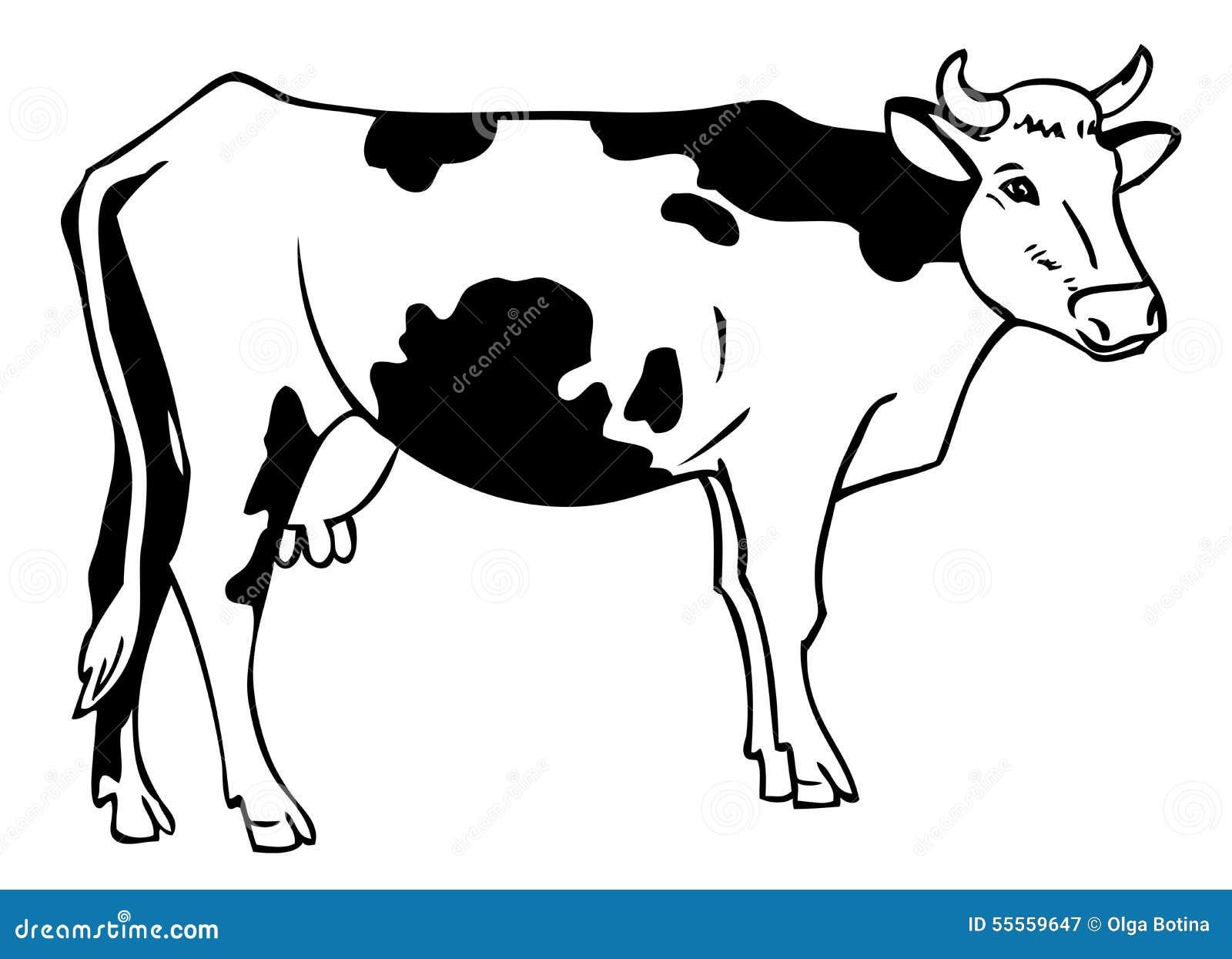 Dessin d 39 une vache illustration de vecteur image 55559647 - Dessiner une vache ...