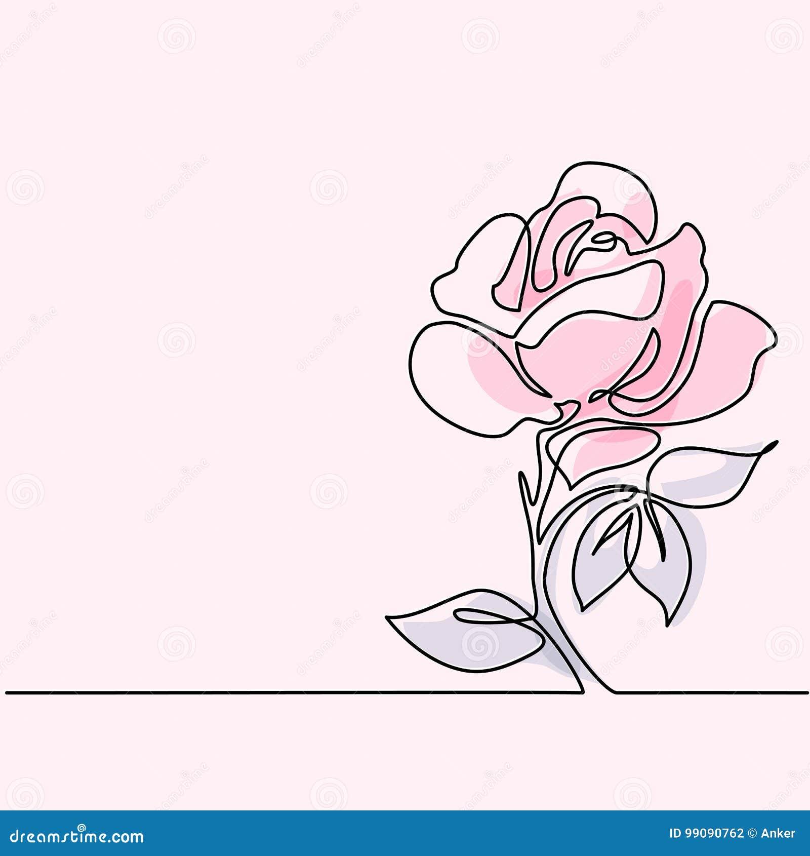 Dessin De Belle Fleur Rose Illustration De Vecteur Illustration Du