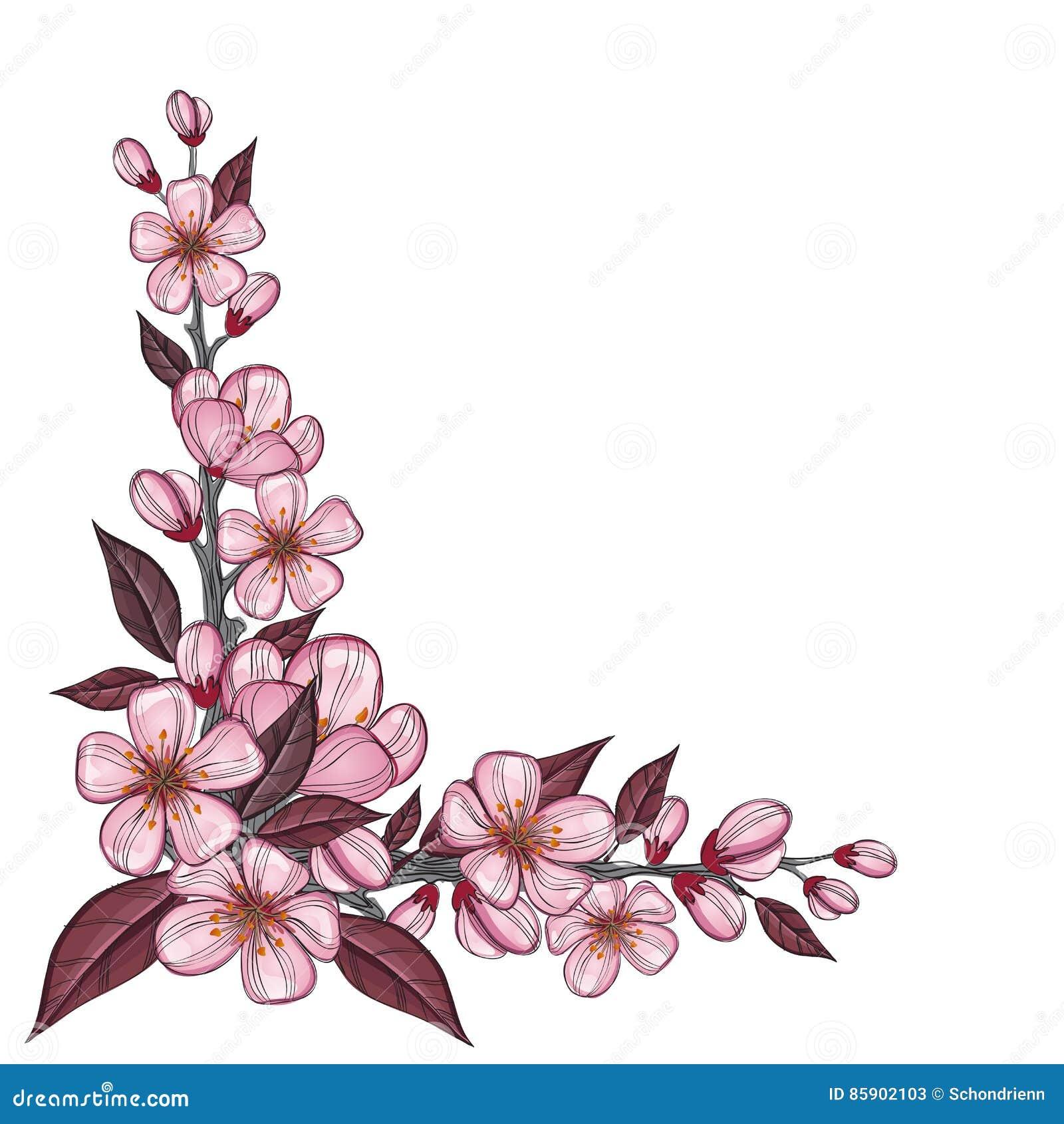 Dessin De Branche D Arbre Avec La Fleur Rose De Cerise Pour La