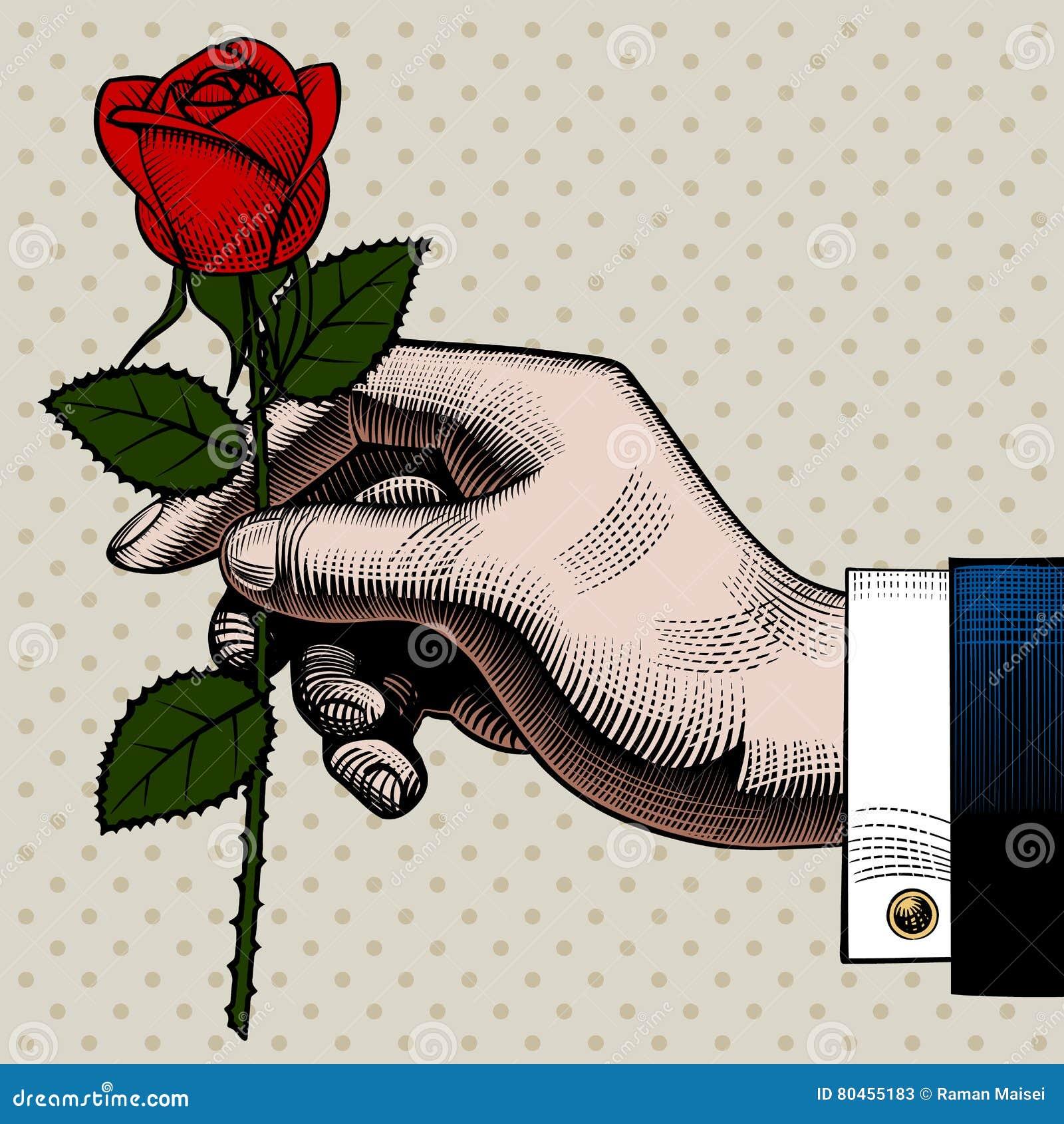 Dessin De Gravure De Couleur De Vintage De Main Avec Une Rose Rouge