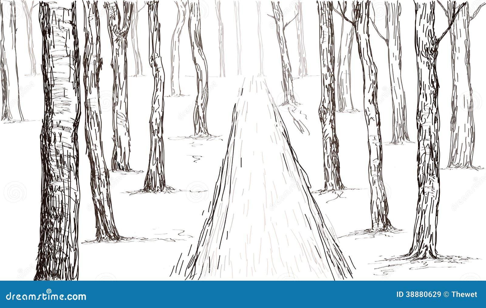 Dessin De Main De Forêt Illustration De Vecteur   Image ... Simple Tree  Drawing